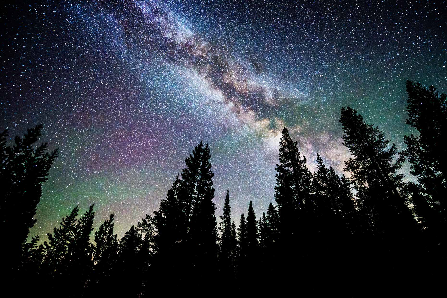 Milky Way And Stars Over Trees - Lake Tahoe, Nevada