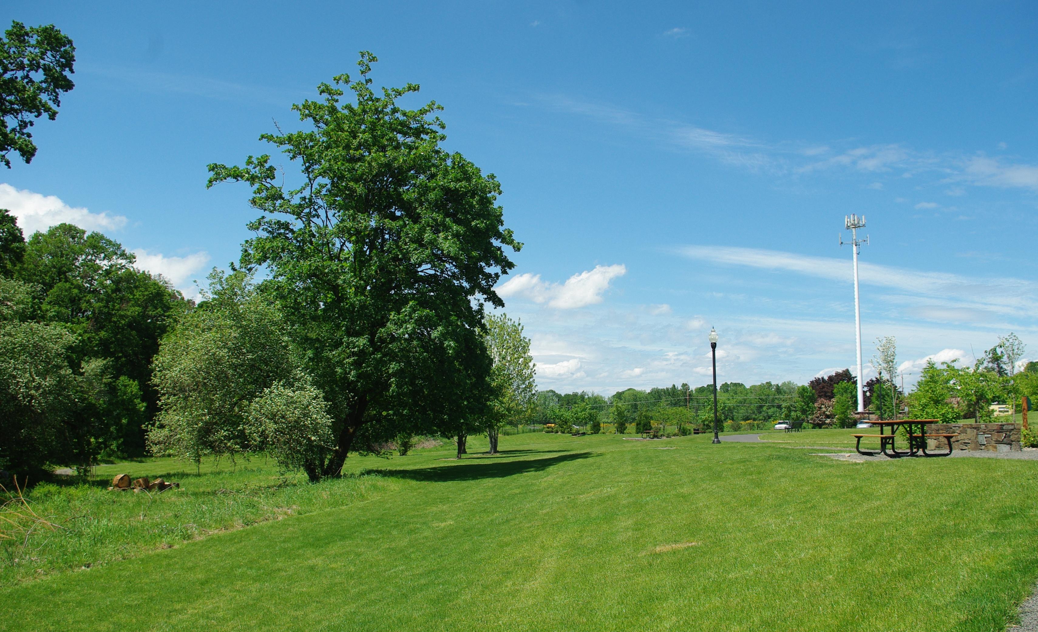 File:Dairy Creek Park Hillsboro Oregon trees.JPG - Wikimedia Commons