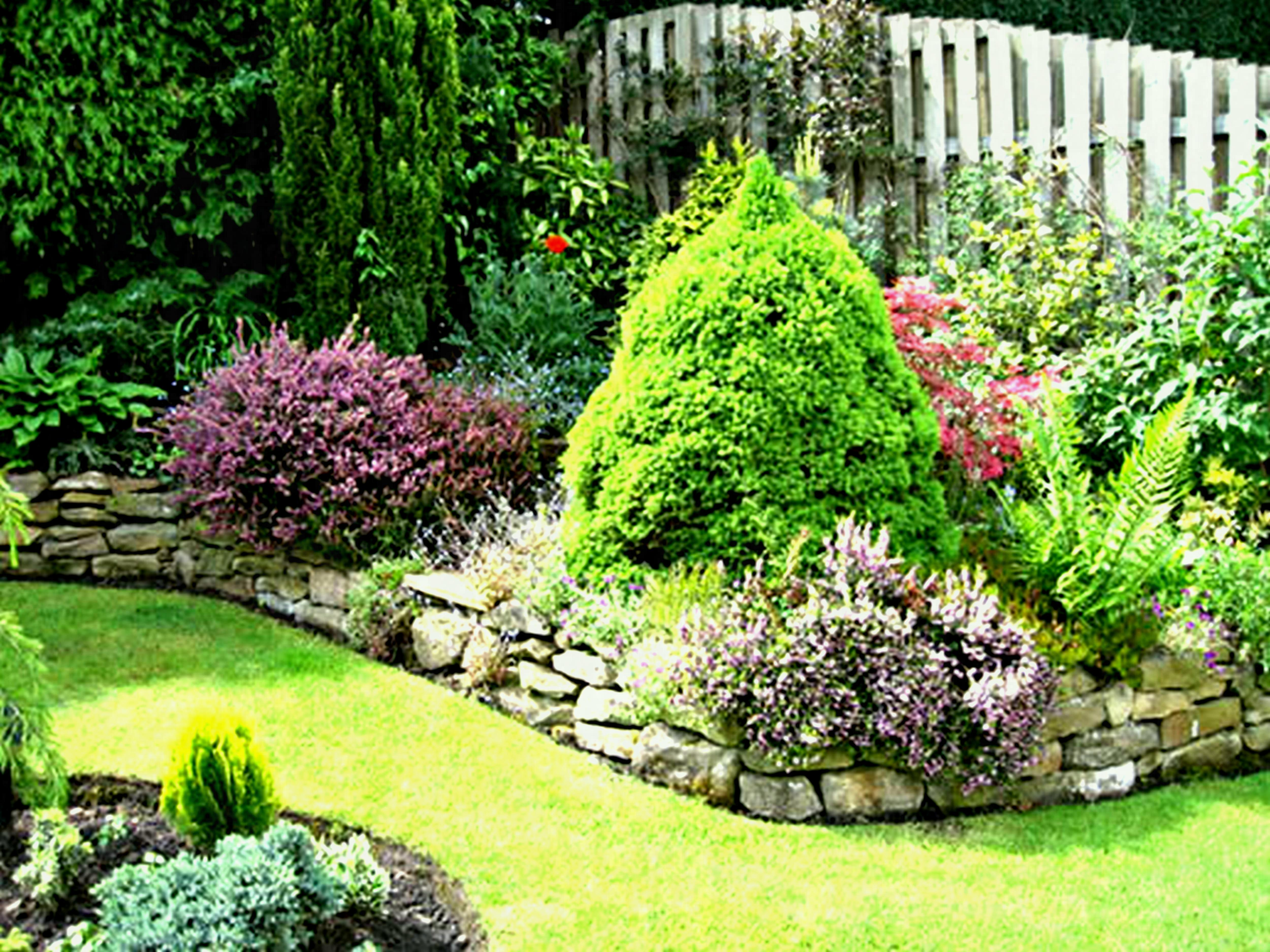 Small Trees For Landscaping Near House Awesome Lawn Garden Backyard ...