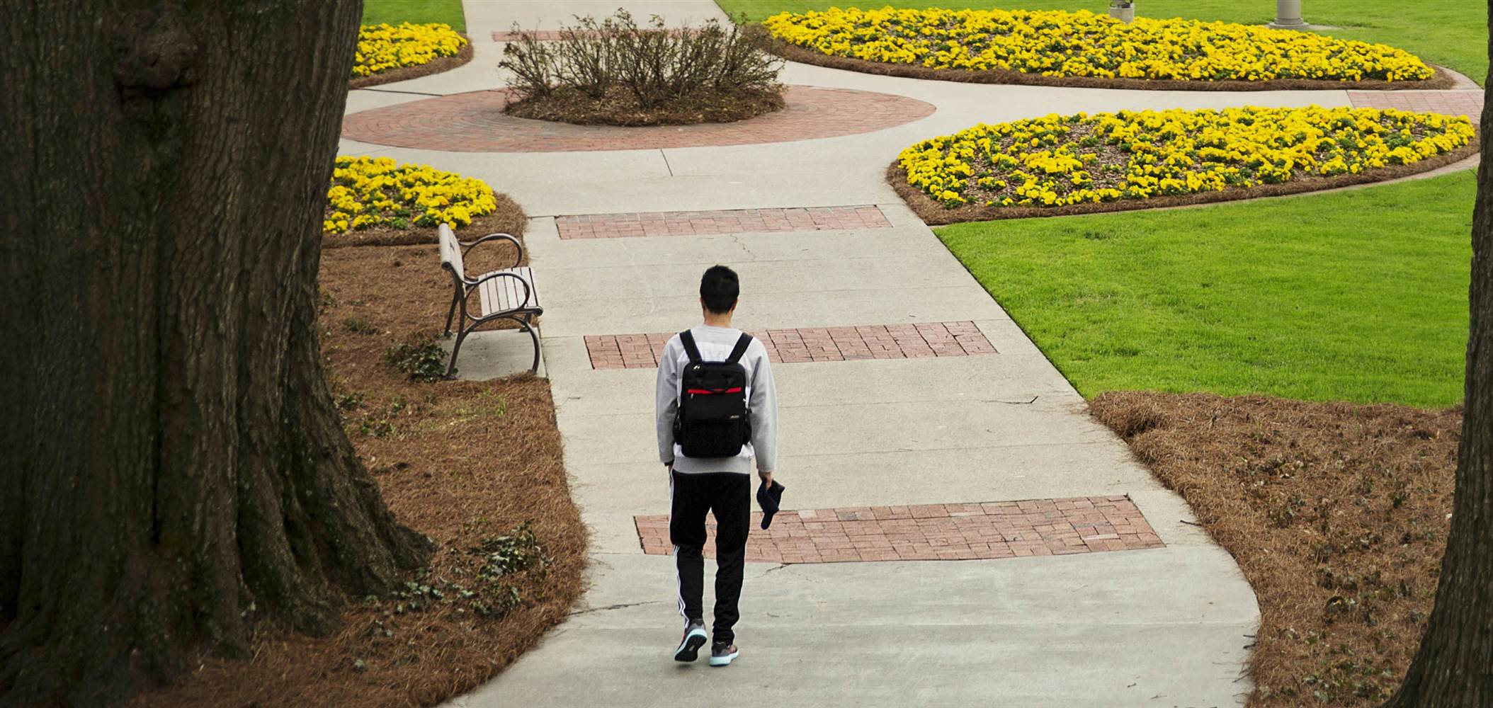 Thousands of College Students Could Be Homeless, Study Suggests ...