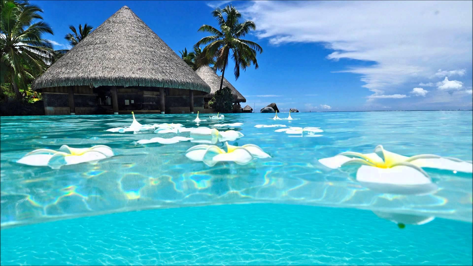 Tropic water photo