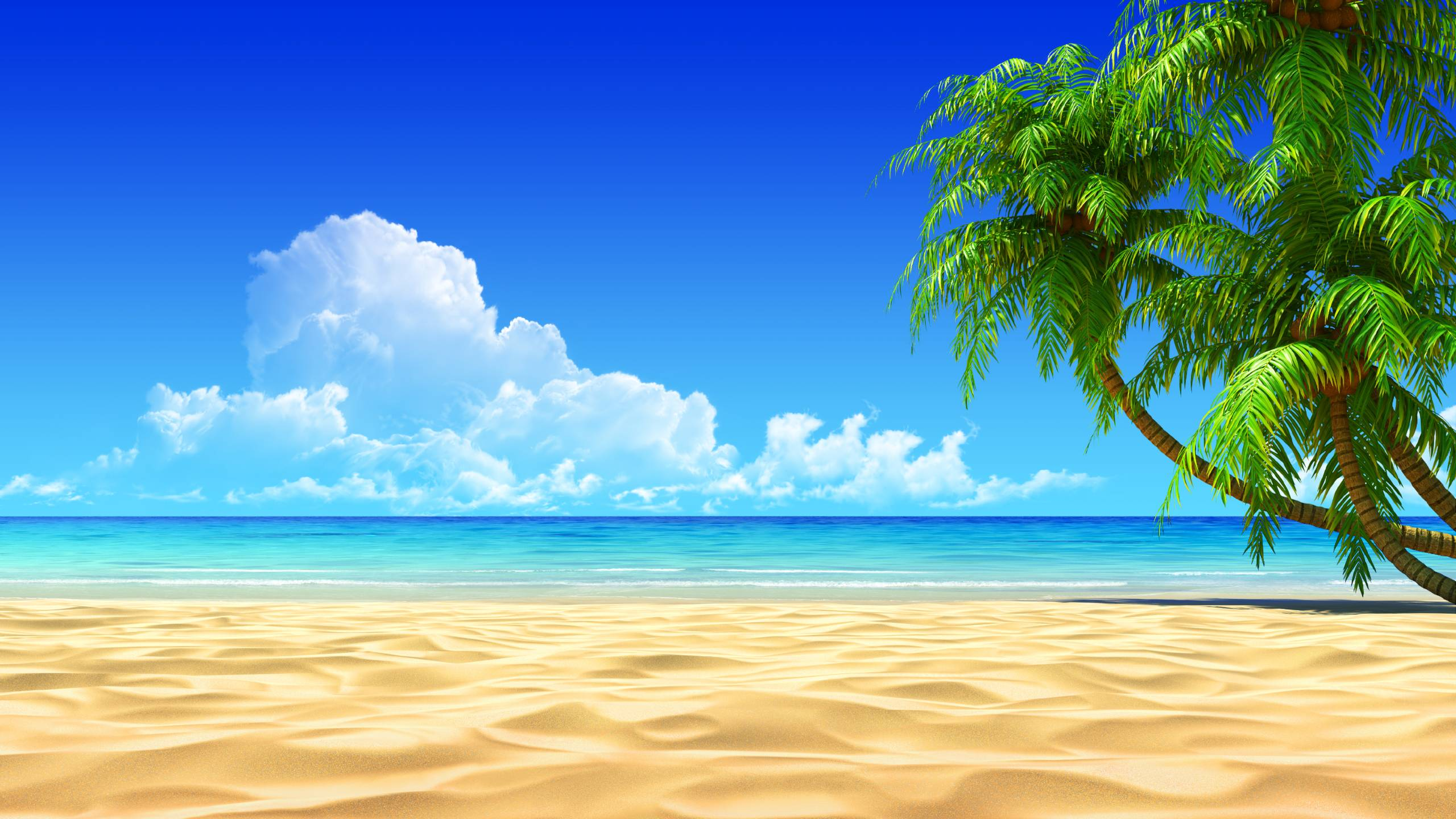 Free Tropical Beach Wallpapers Background « Long Wallpapers
