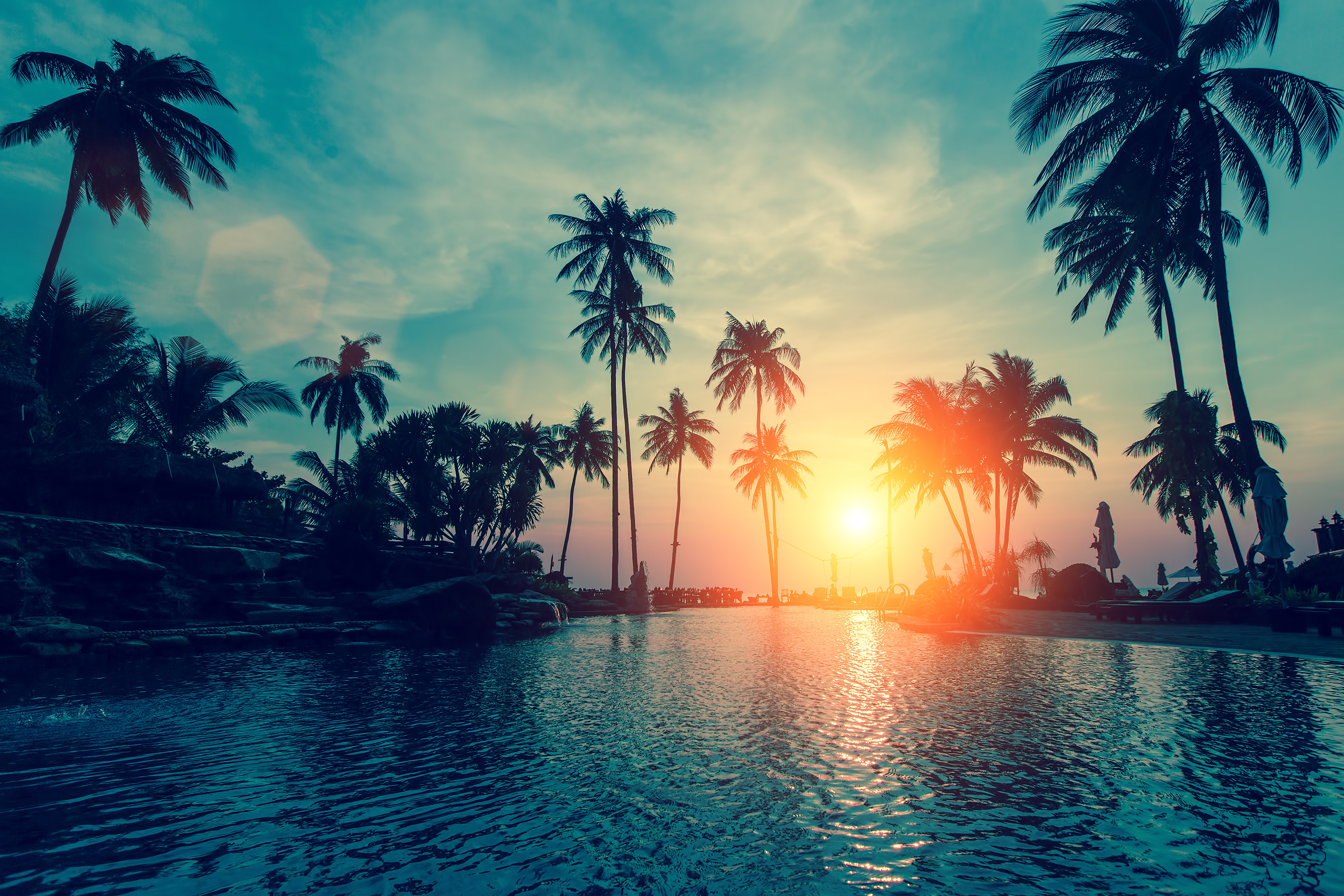 Wallpaper Sunset, Palm trees, Tropical beach, HD, Nature, #6500