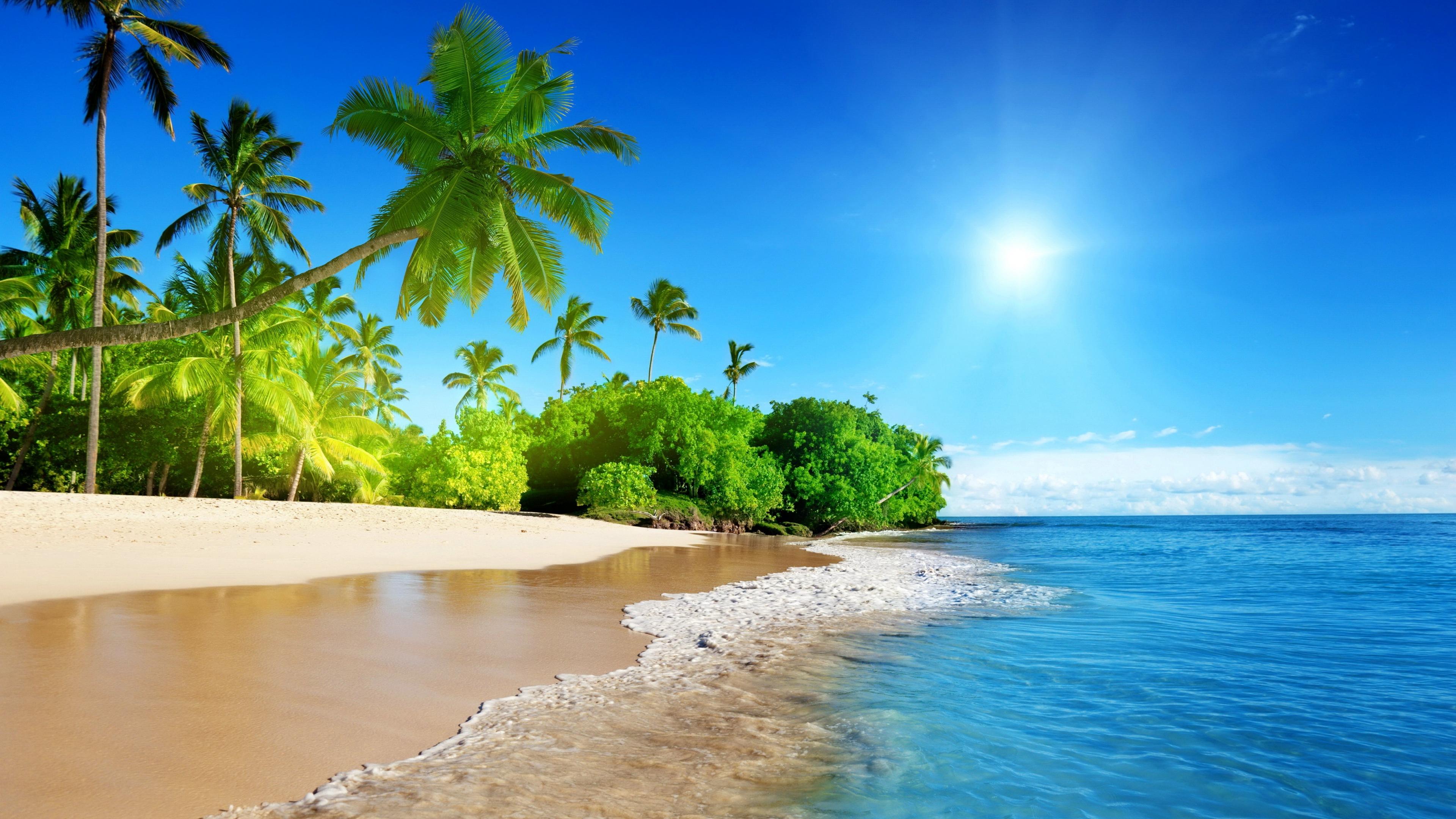 Best Tropical Beach Desktop Wallpaper For Iphone Hd Pics ...