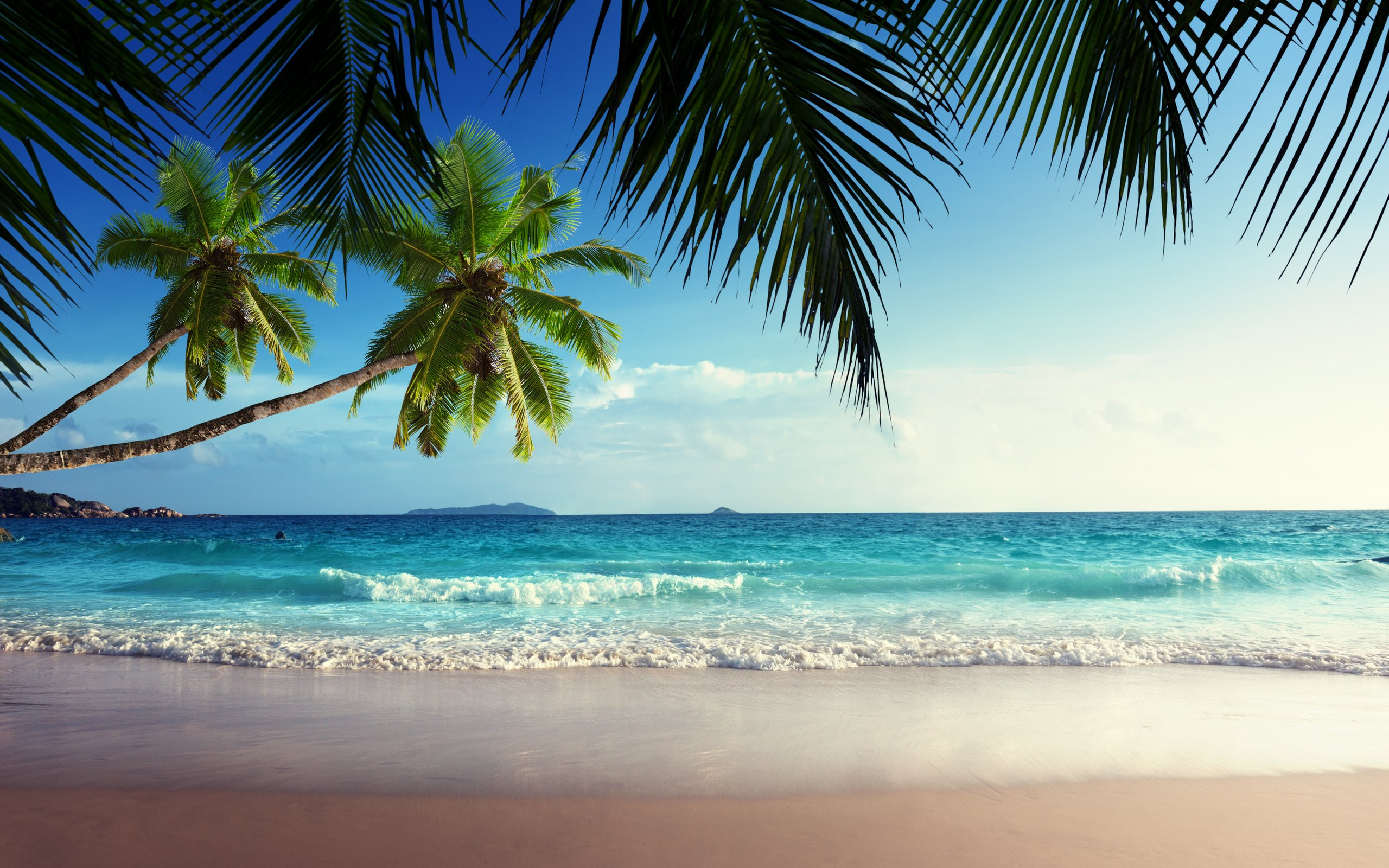 Tropical Beach Paradis HD Wallpaper, Background Images