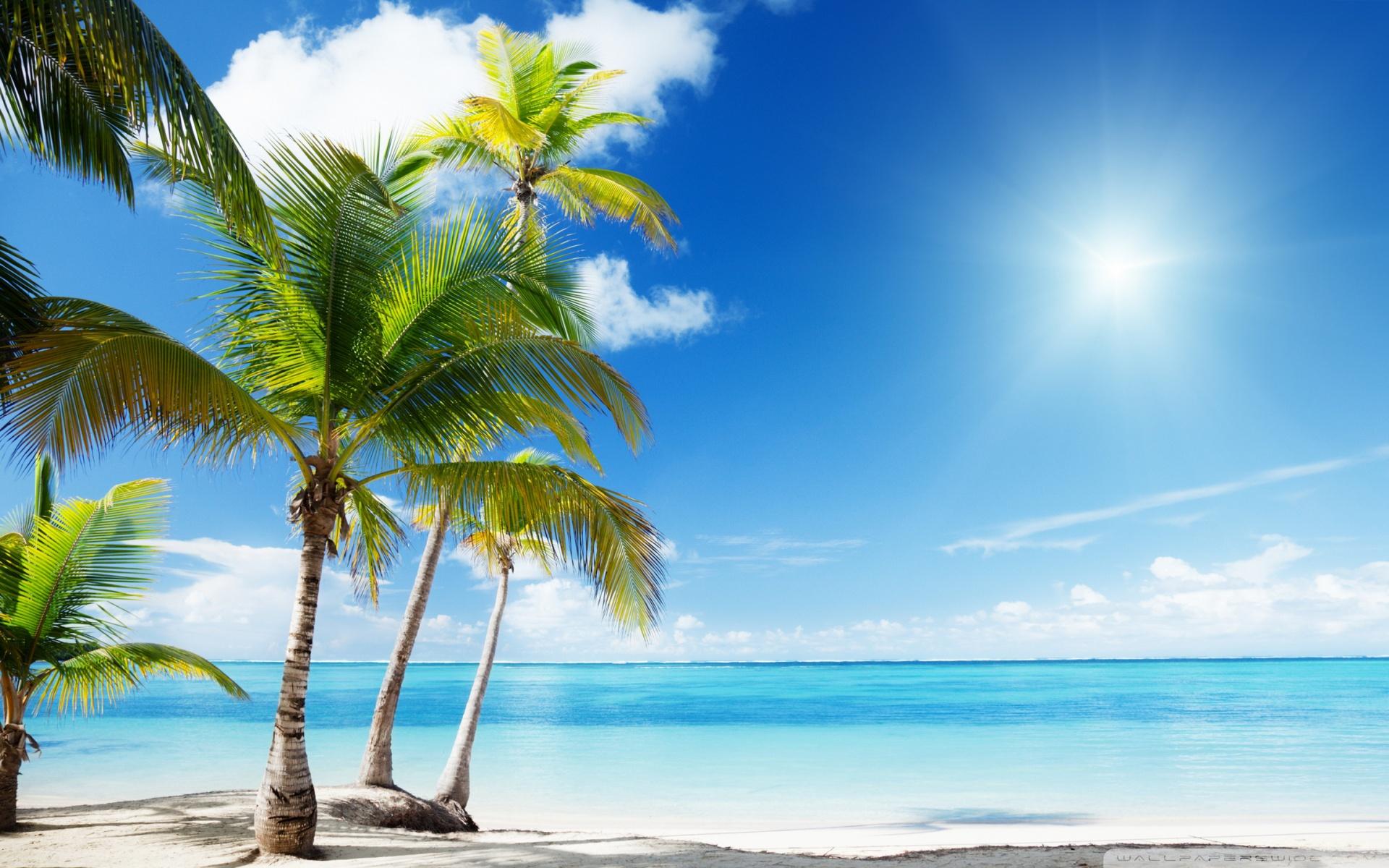 Tropical Beach Paradise ❤ 4K HD Desktop Wallpaper for 4K Ultra HD ...