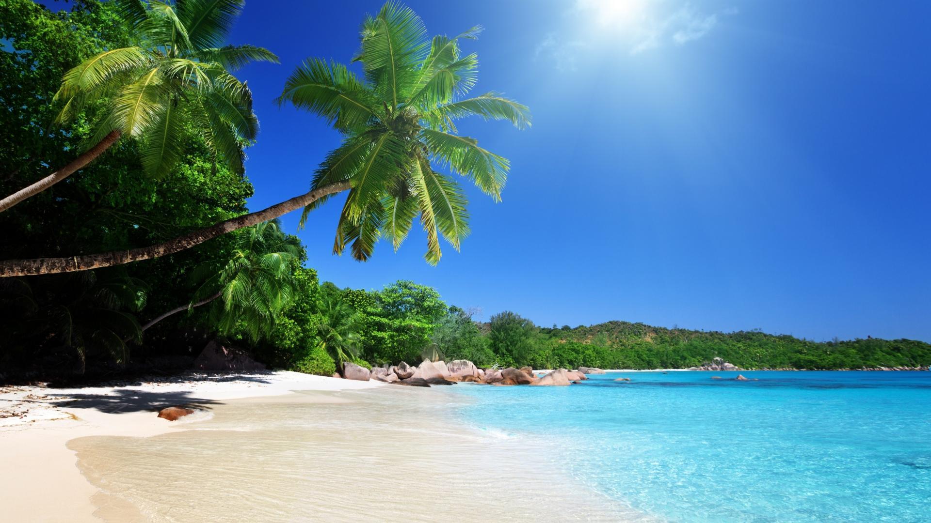 Tropical beach wallpaper   (29993)