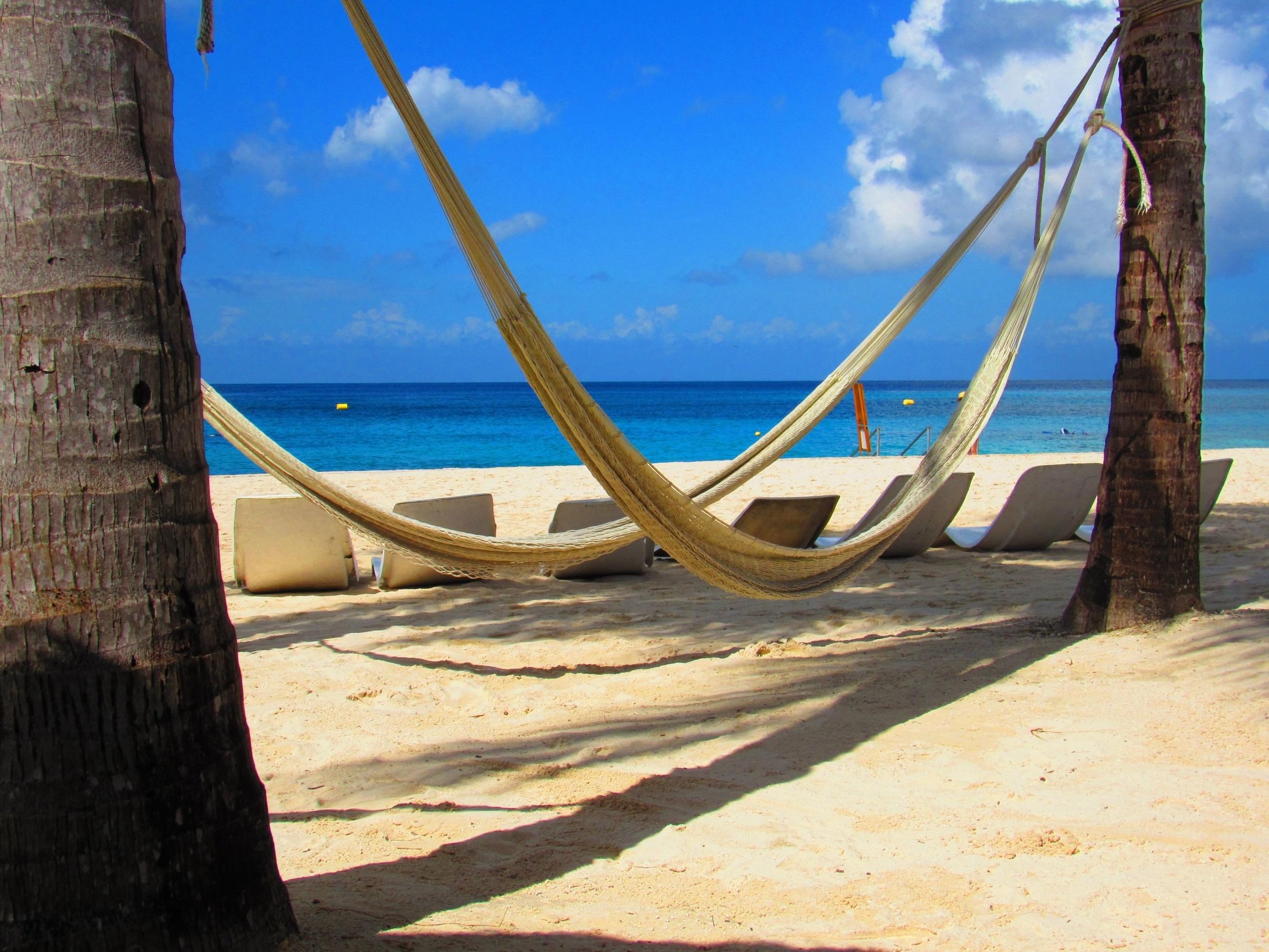 Tropical Beach, Beach, Picnic, Sea, Seashore, HQ Photo