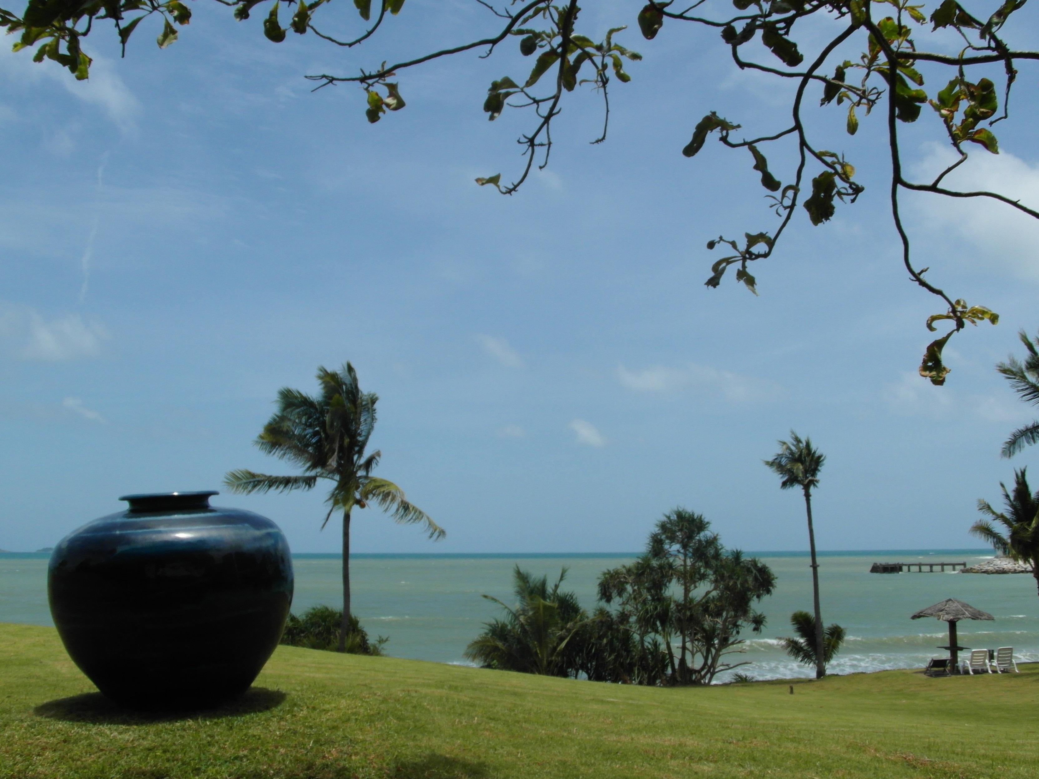 Tropical garden by the ocean photo