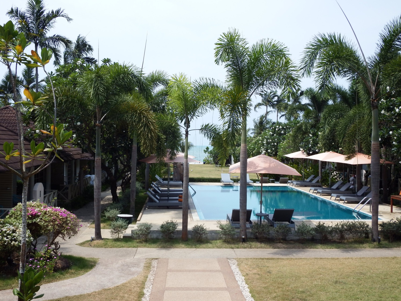 Tropical Swimming Pool, Blue, Tropical, Tree, Swimming, HQ Photo
