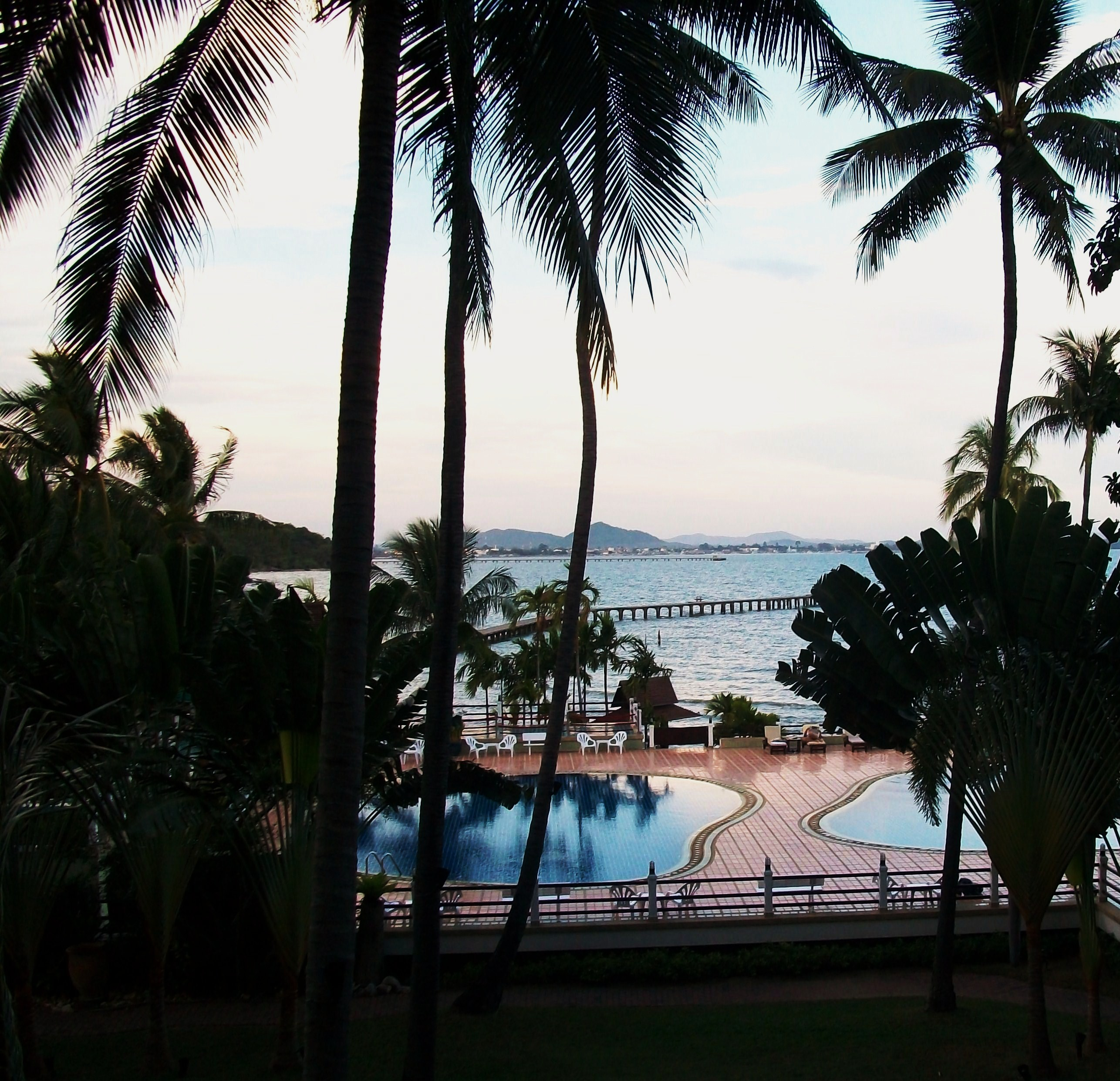 Tropical Swimming Pool, Asia, Asian, Tropical, Trees, HQ Photo