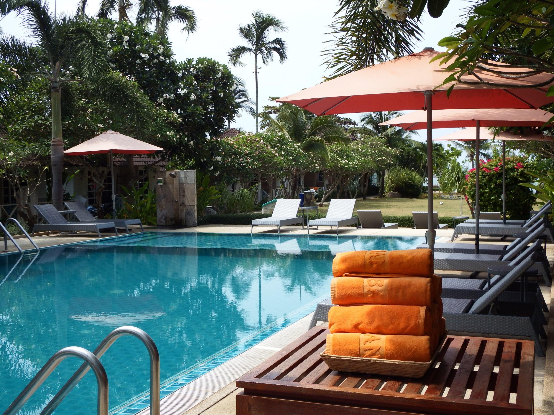 Tropical Swimming Pool, Blue, Resort, Tropical, Trees, HQ Photo