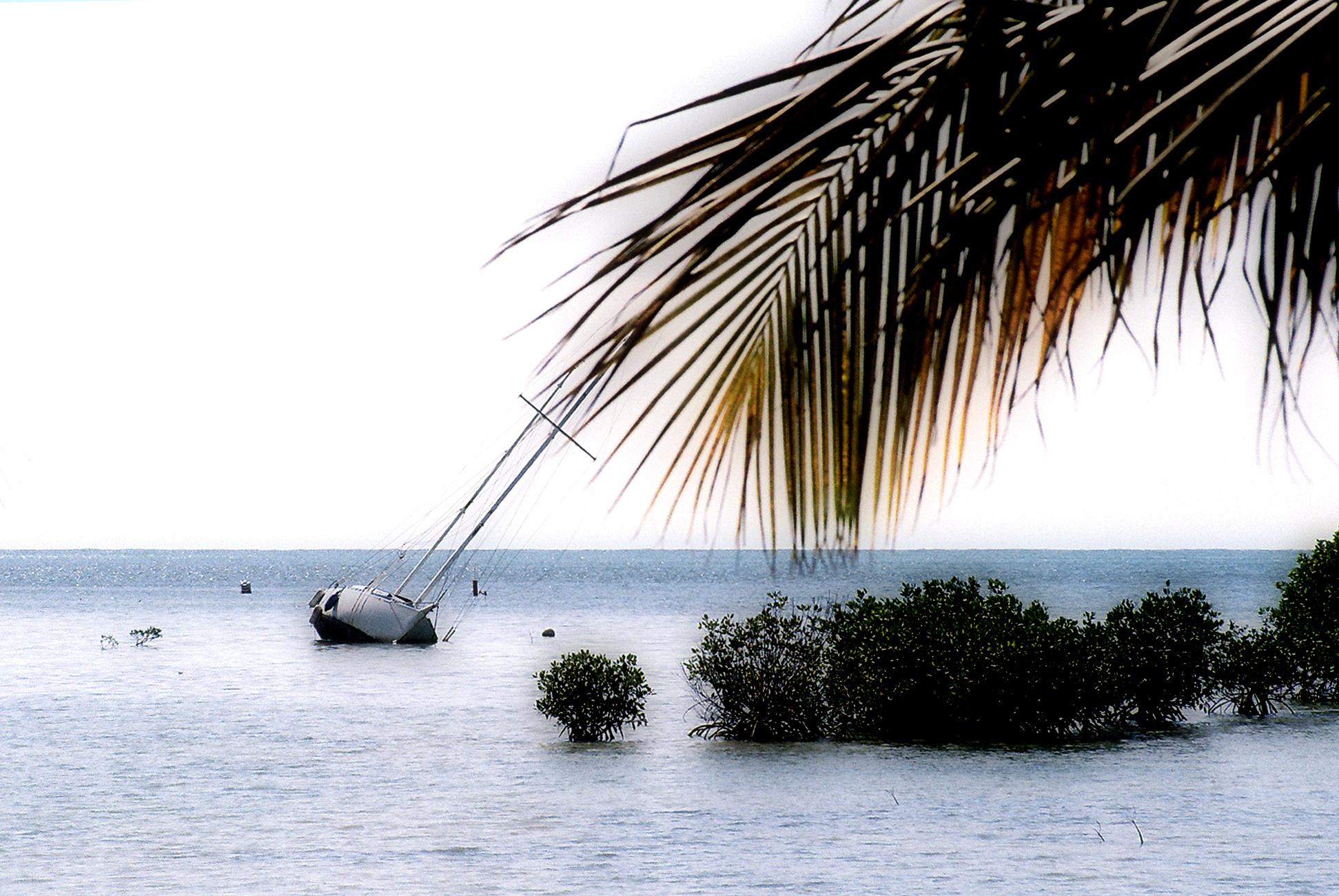 Trouble at the sandbar, Listing, Mangroves, Ocean, Sailboat, HQ Photo
