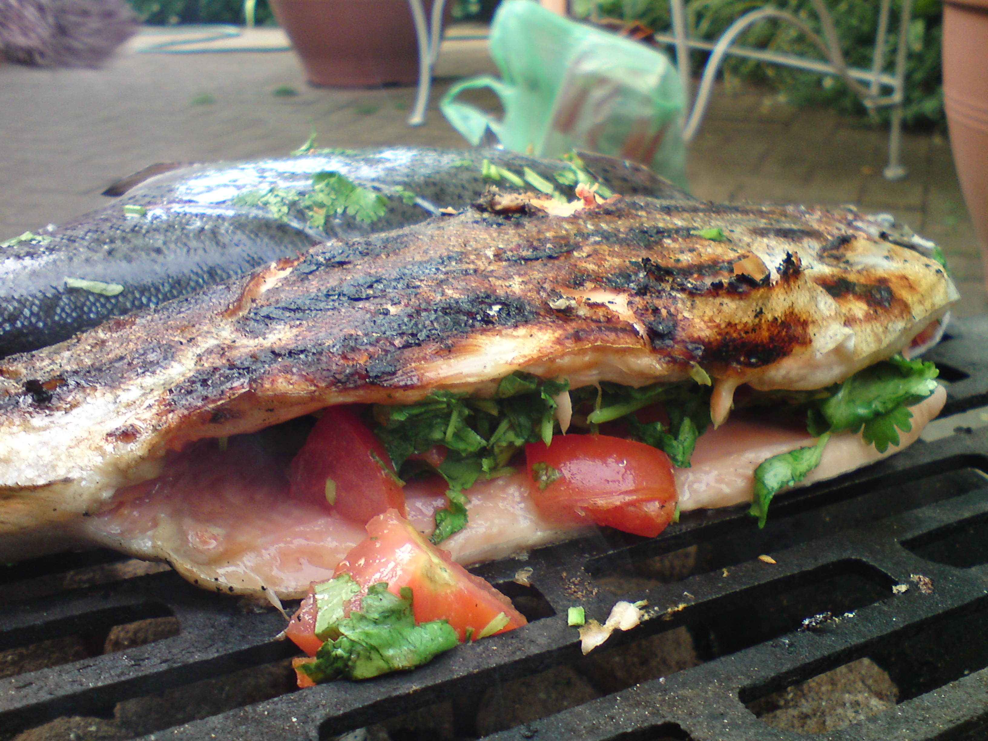 Grilled Fish Recipes Bbq