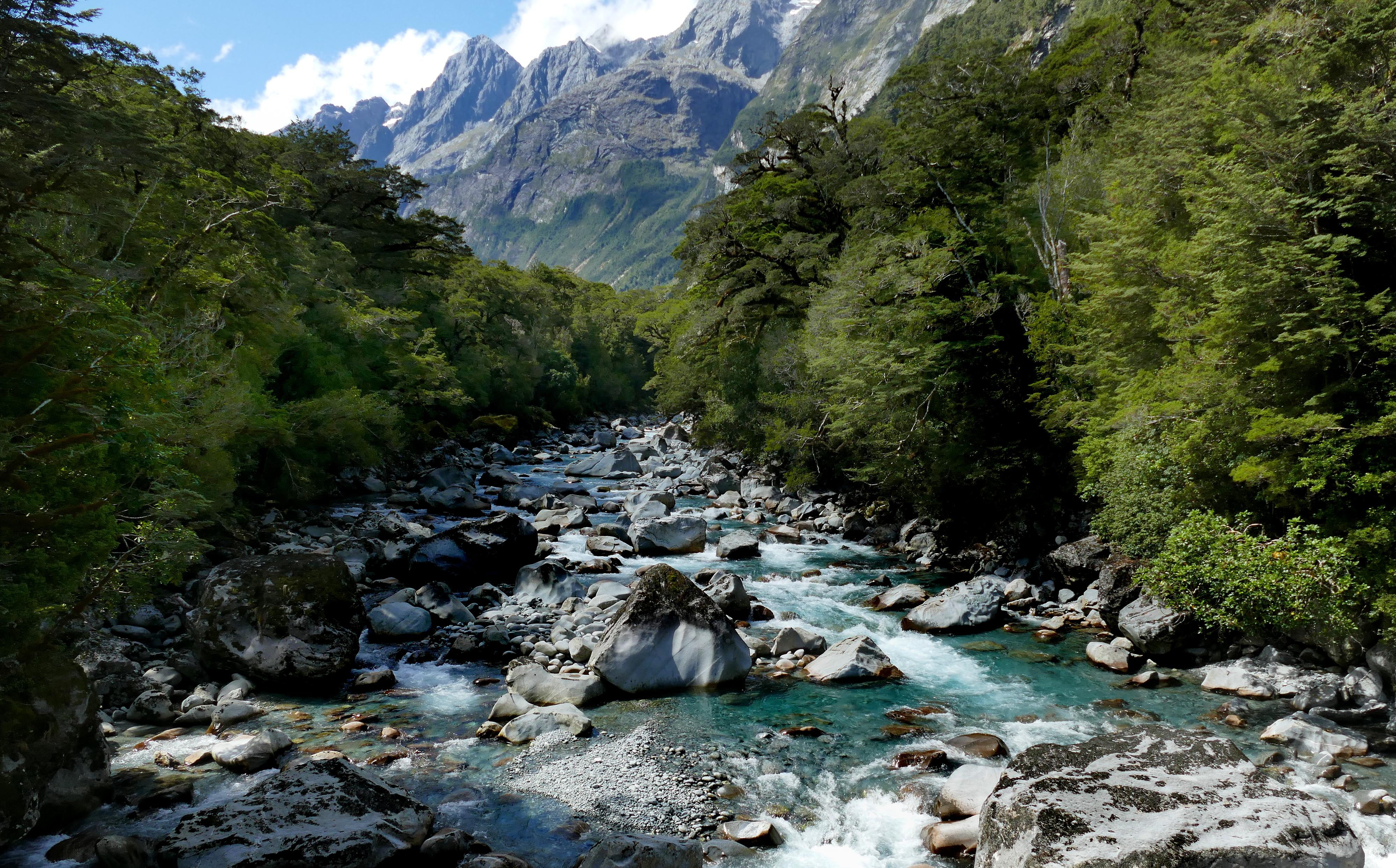 Tutuko river fiordland national park nz photo