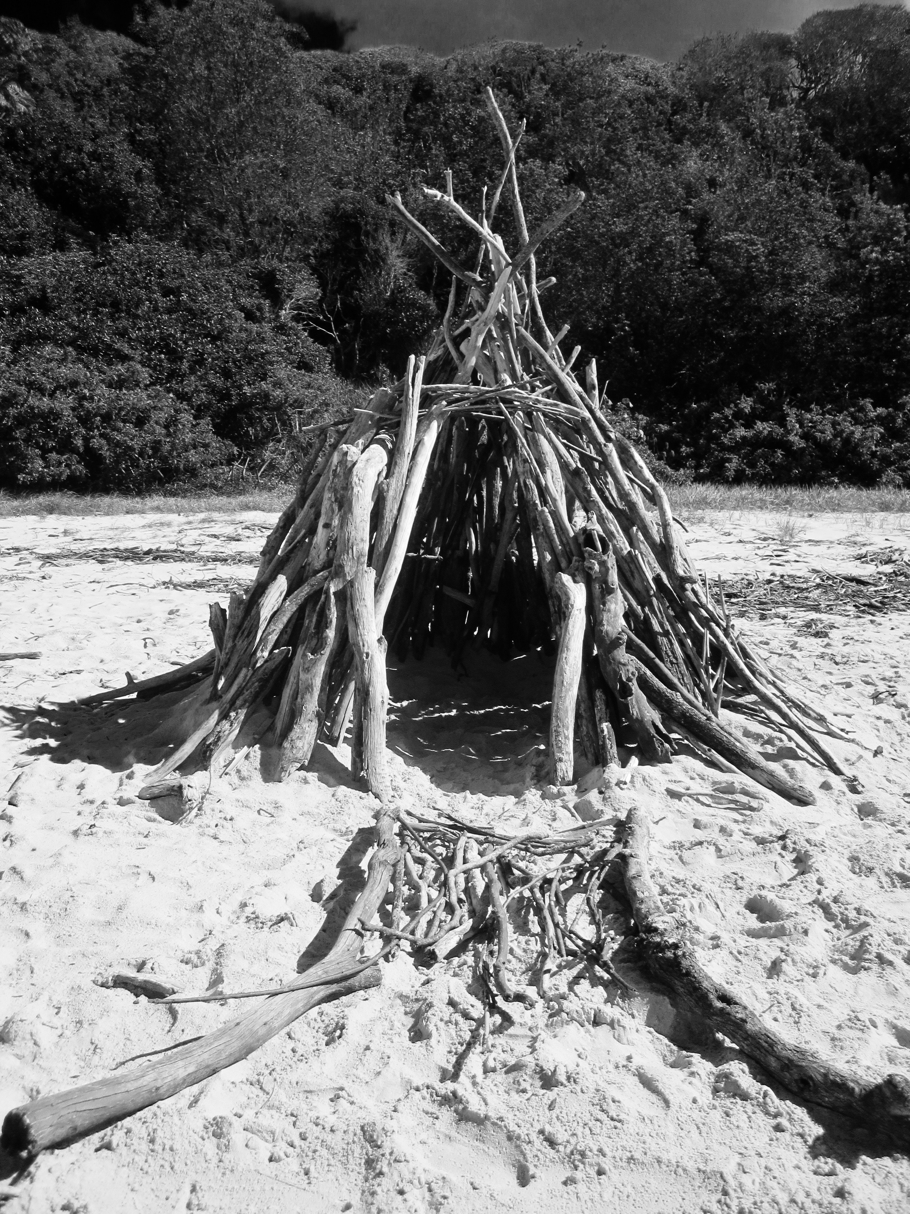 Twig Tent on Seashore, Adventure, Sand, Twigs, Trees, HQ Photo