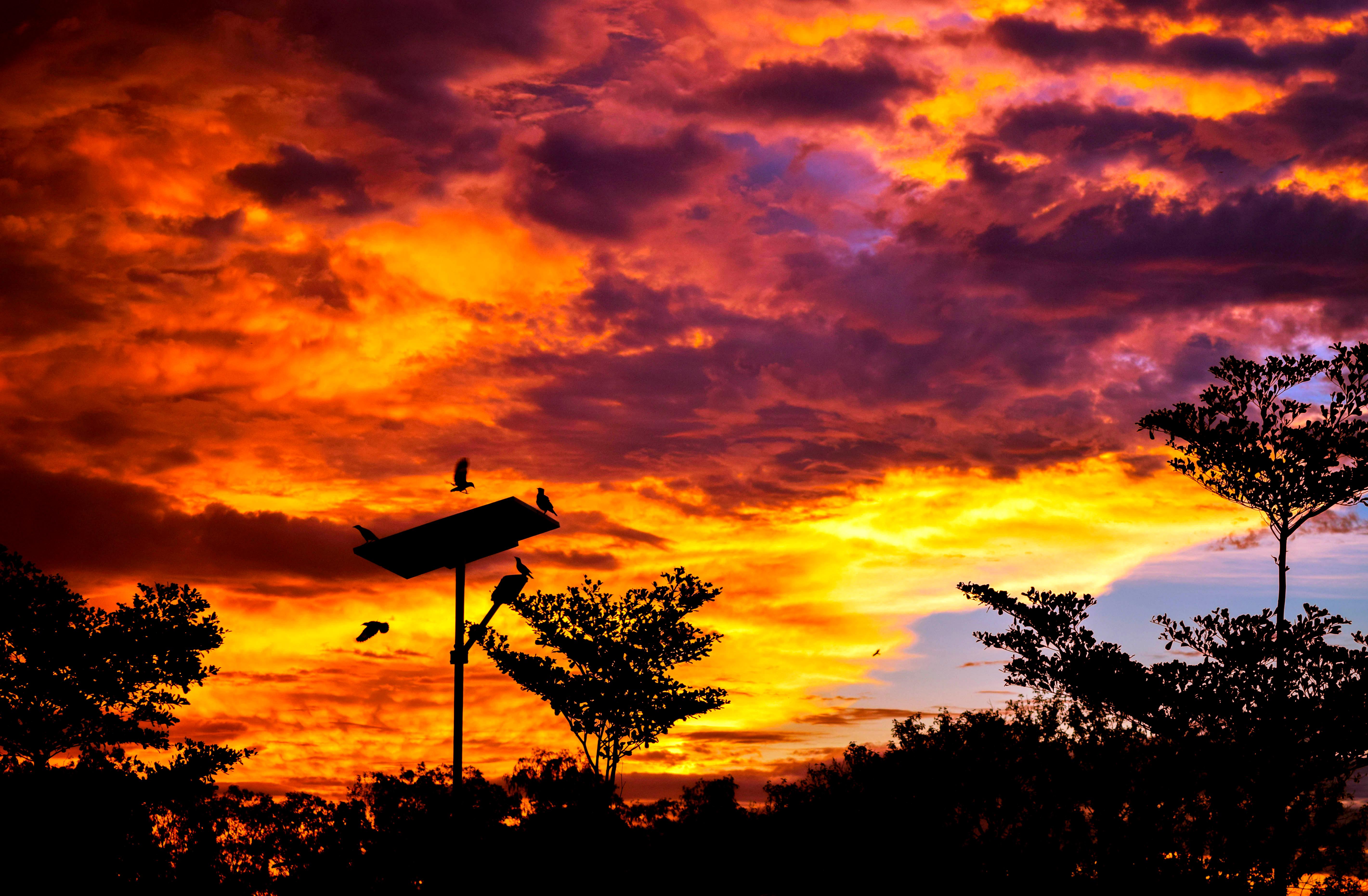Twilight clouds photo