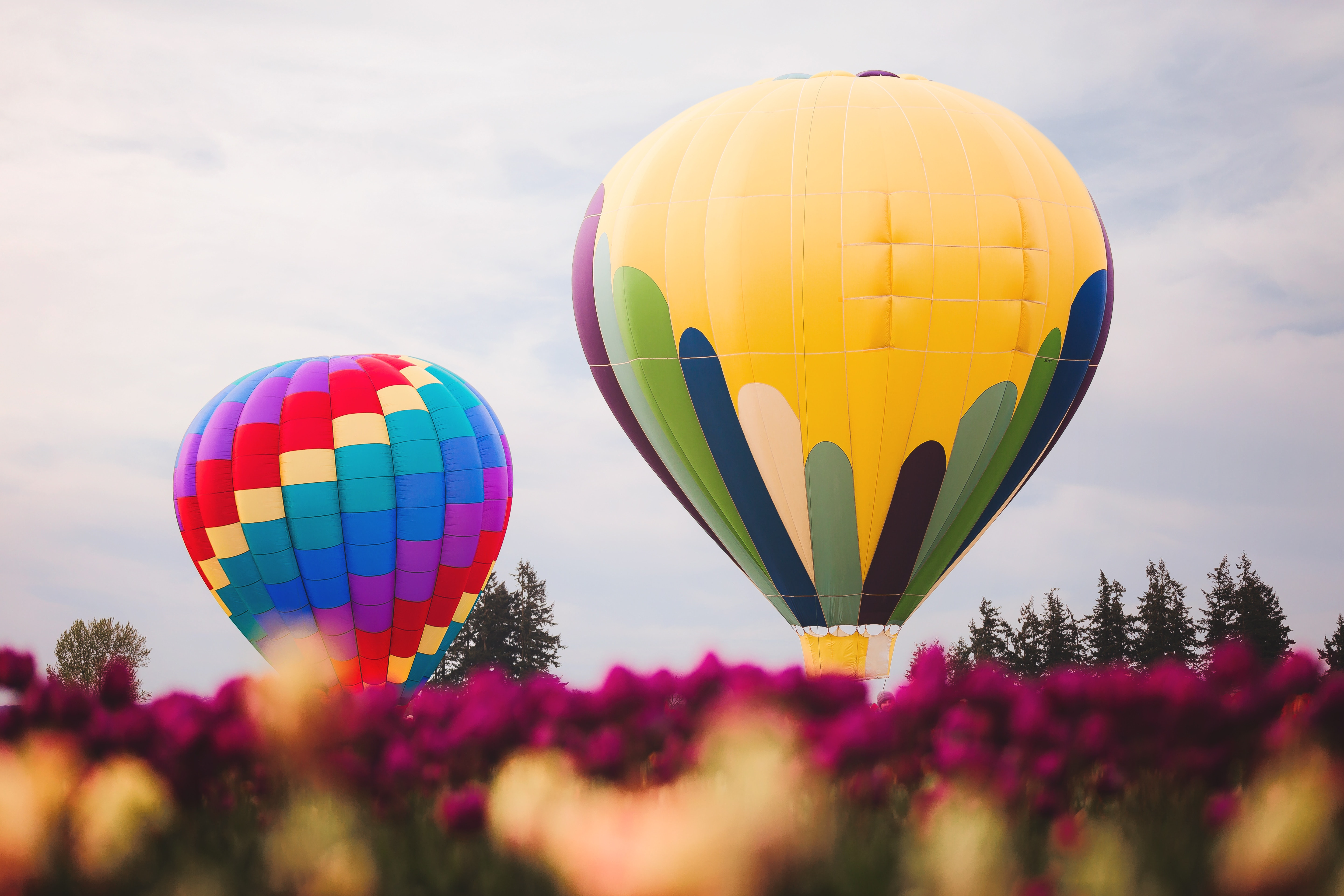 Two assorted color hot air balloons photo