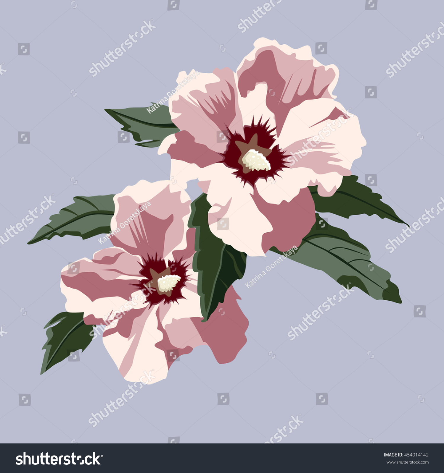 Two Beautiful Pink Flowers Hibiscus Leaves Stock Vector 454014142 ...