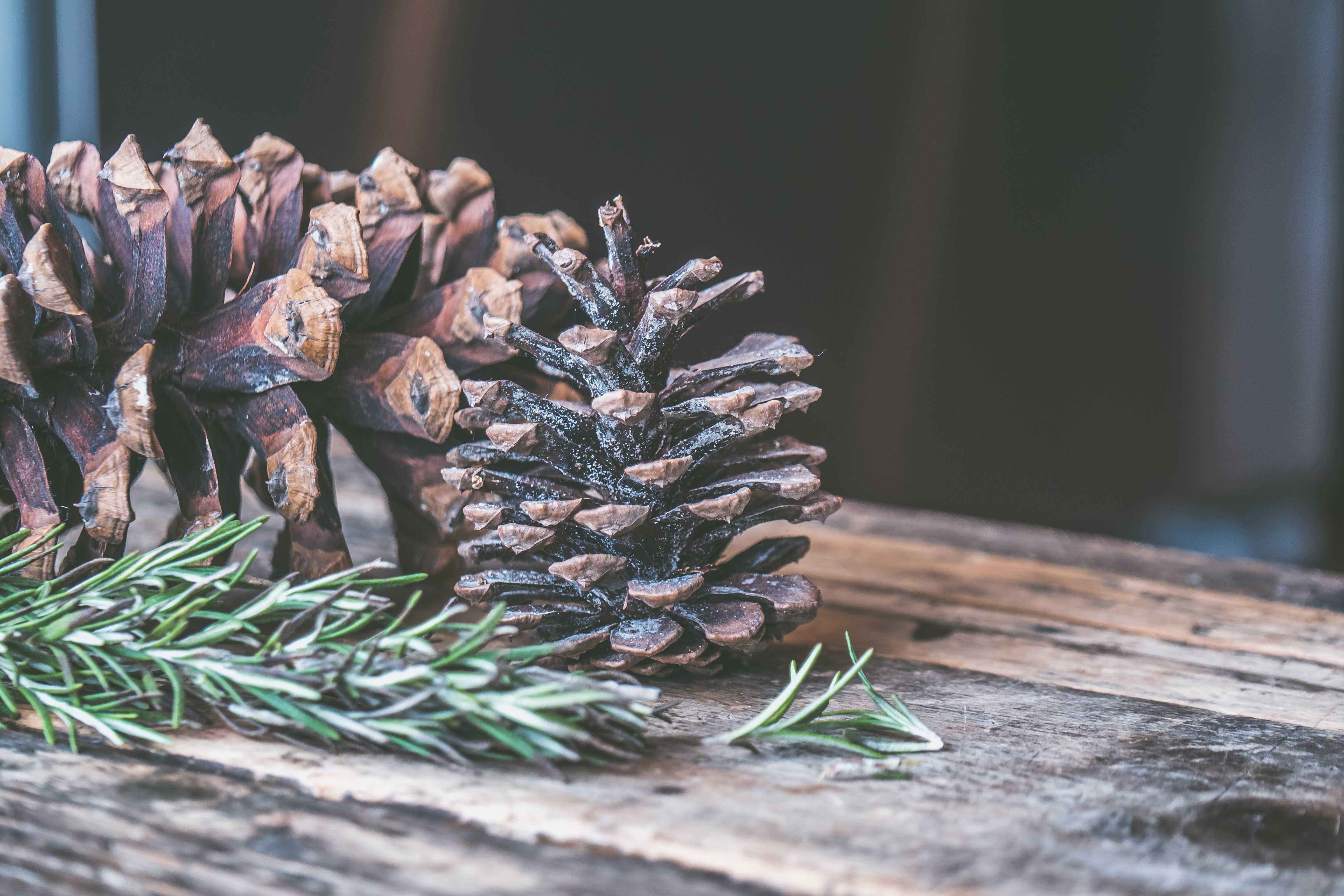 Two Brown Pine Cones on Brown Wooden Surface, Christmas, Pine, Wood, Traditional, HQ Photo