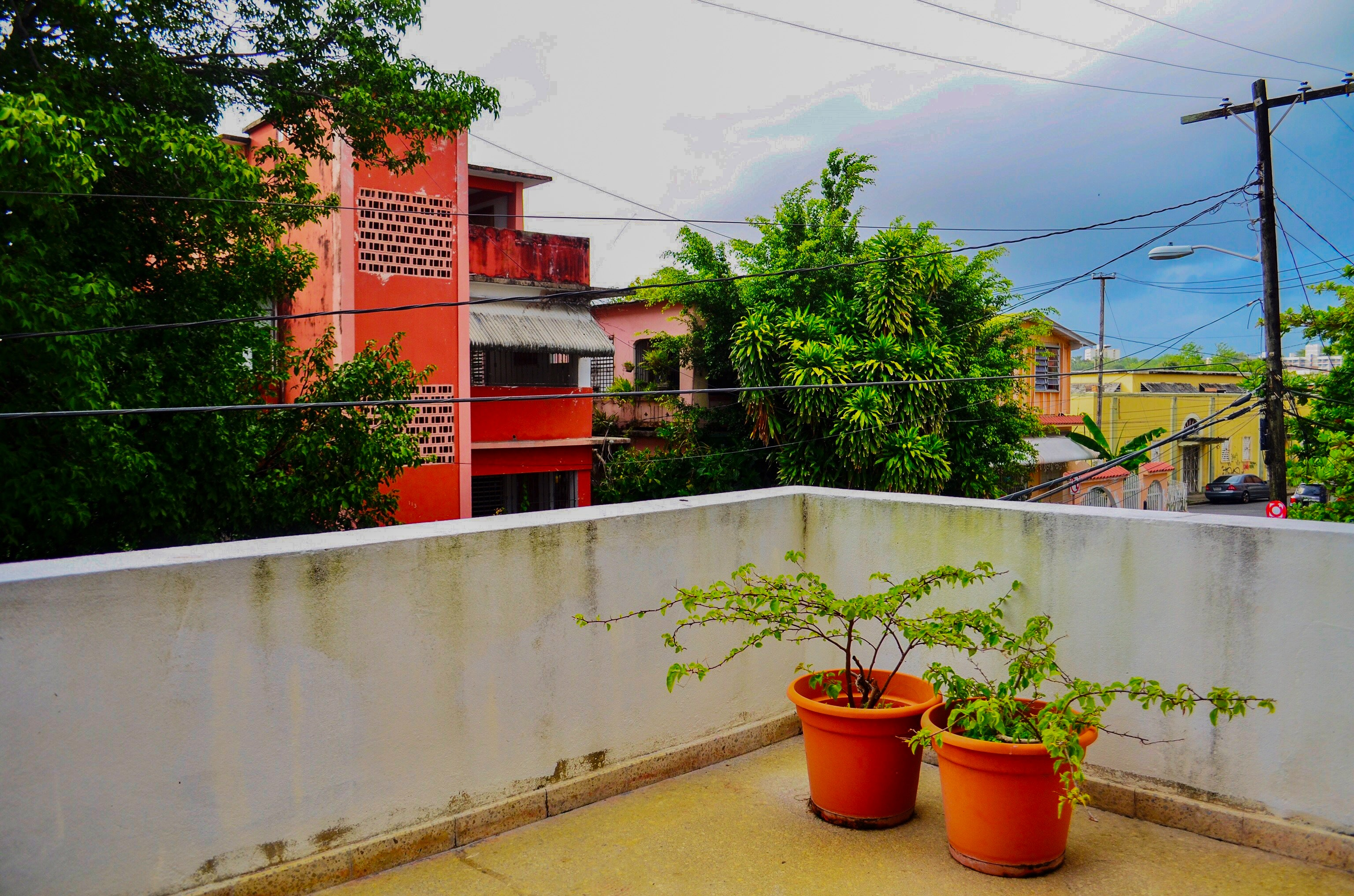 Two green leaf plants with orange pots on terrace photo