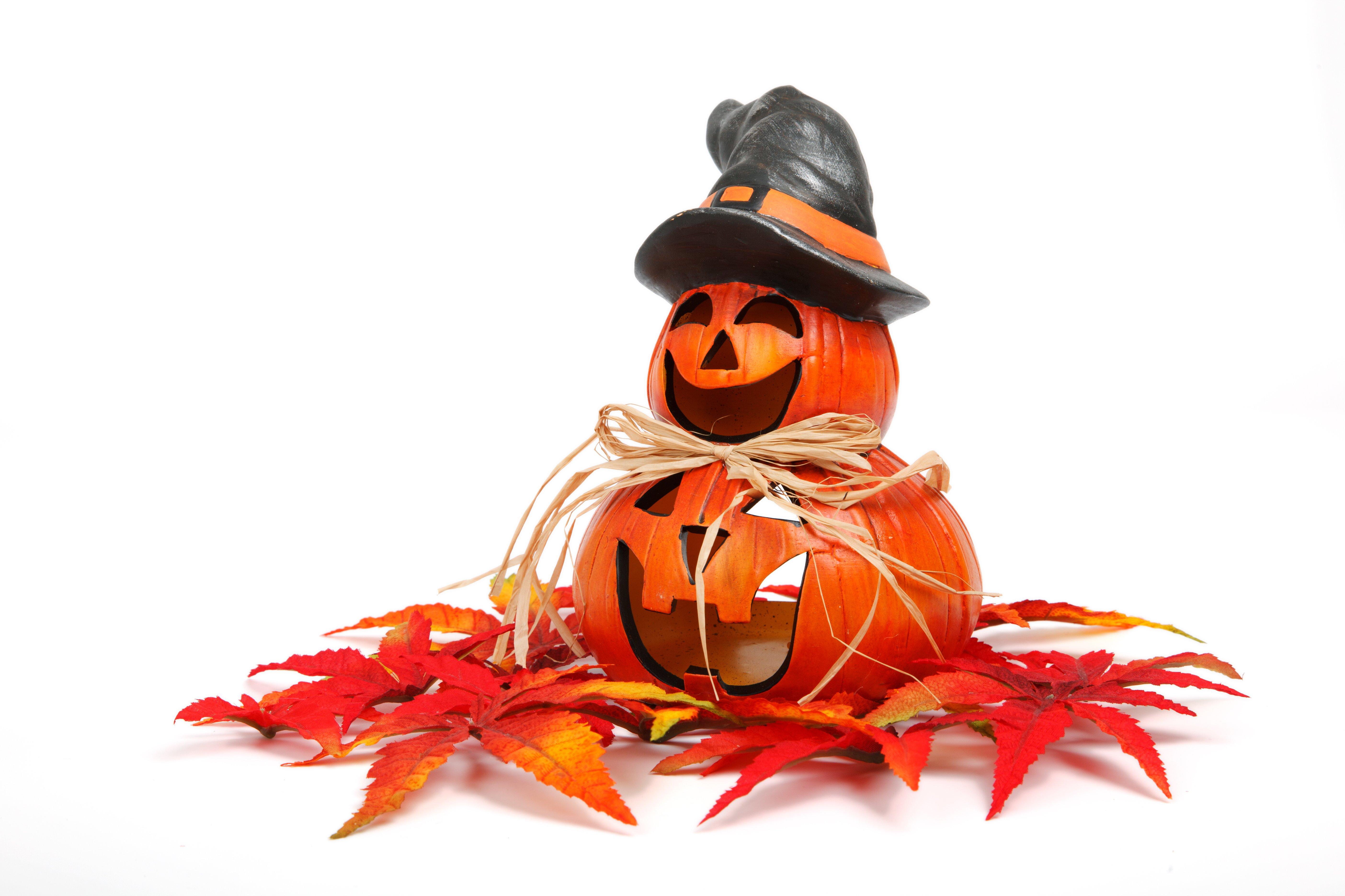 Two halloween pumpkins photo