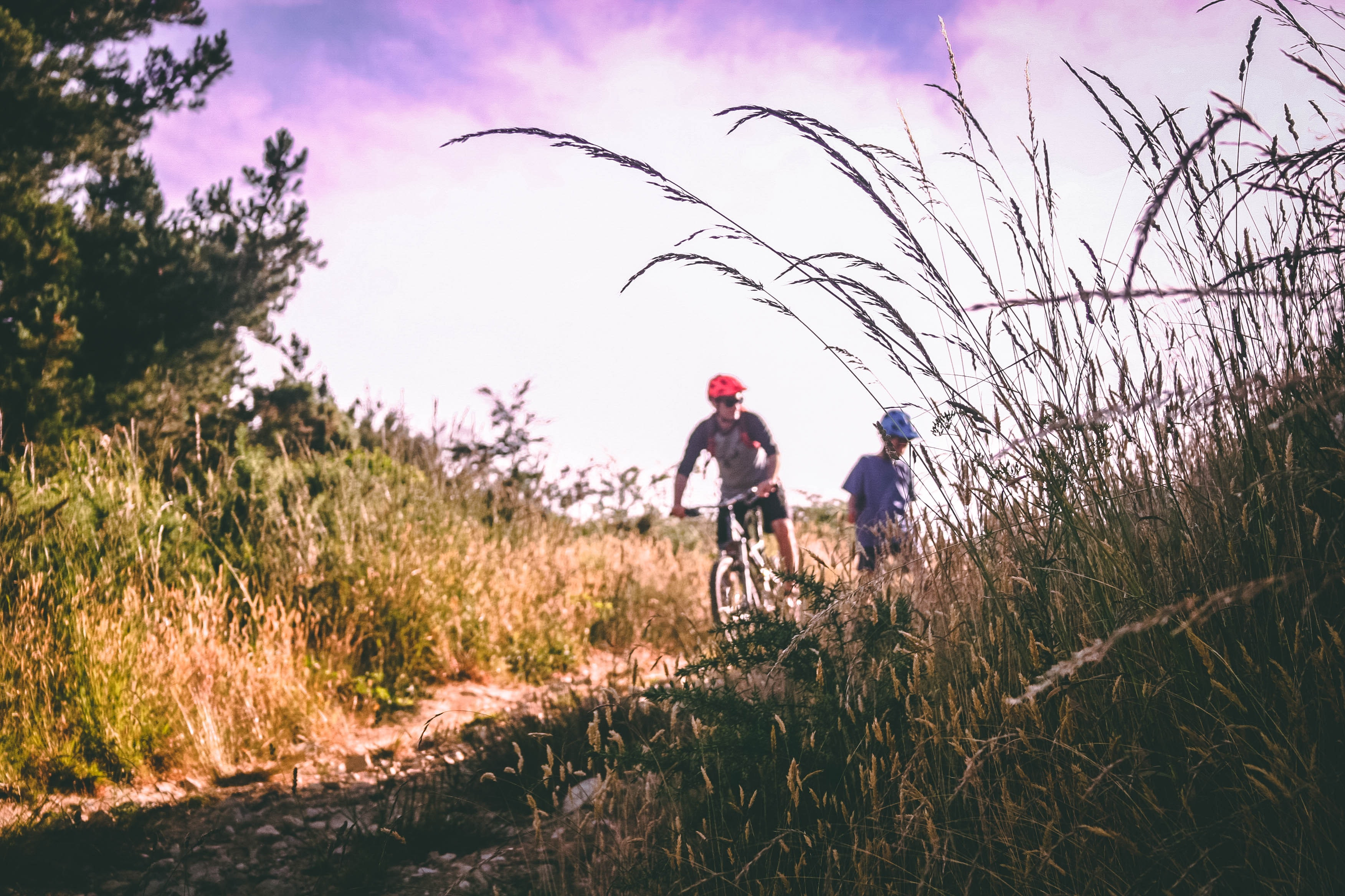 Two People Riding Bicycle, Mountain bike, Unpaved pathway, Trees, Sky, HQ Photo