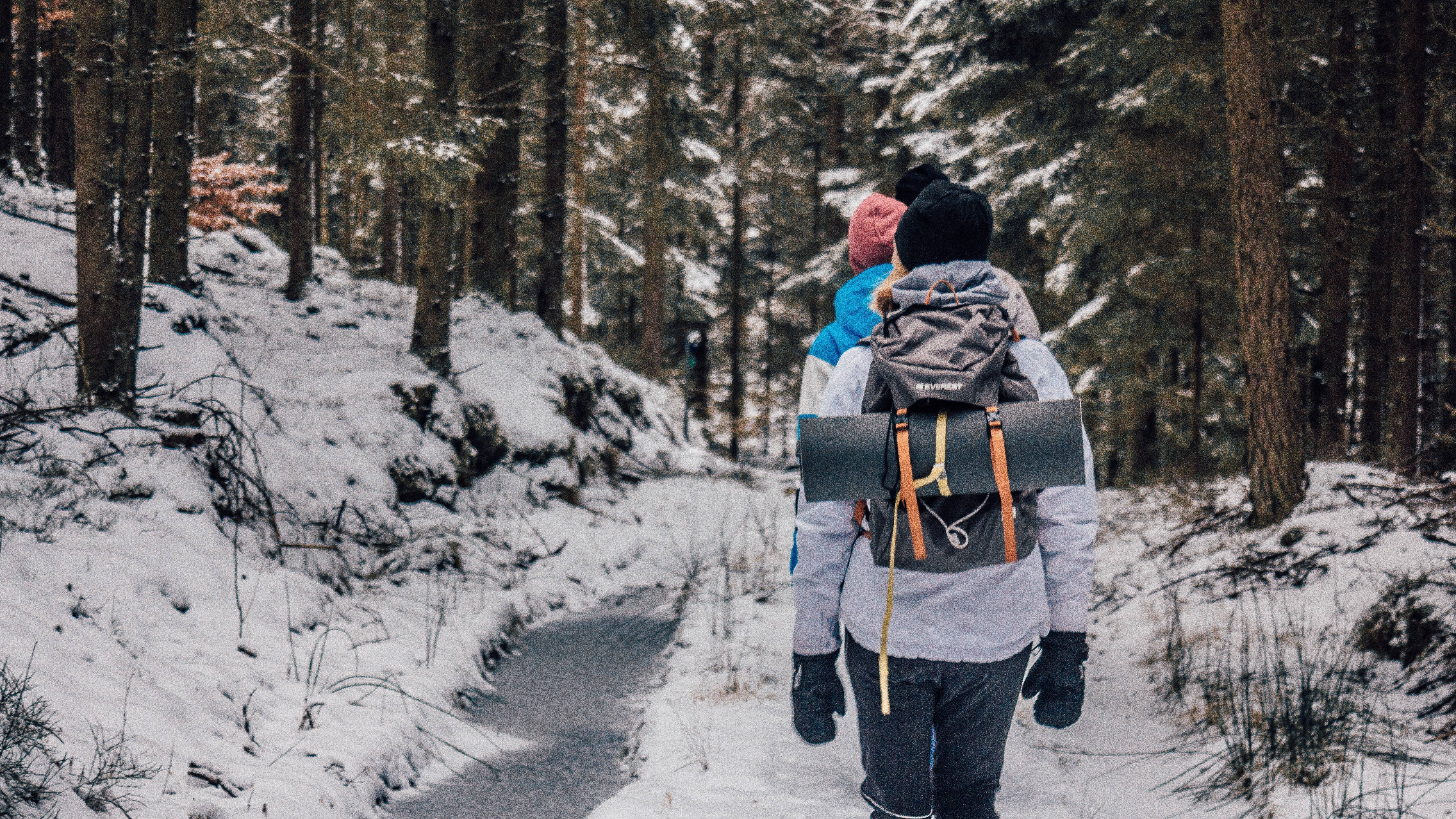 Two people walking in woods with snow photo