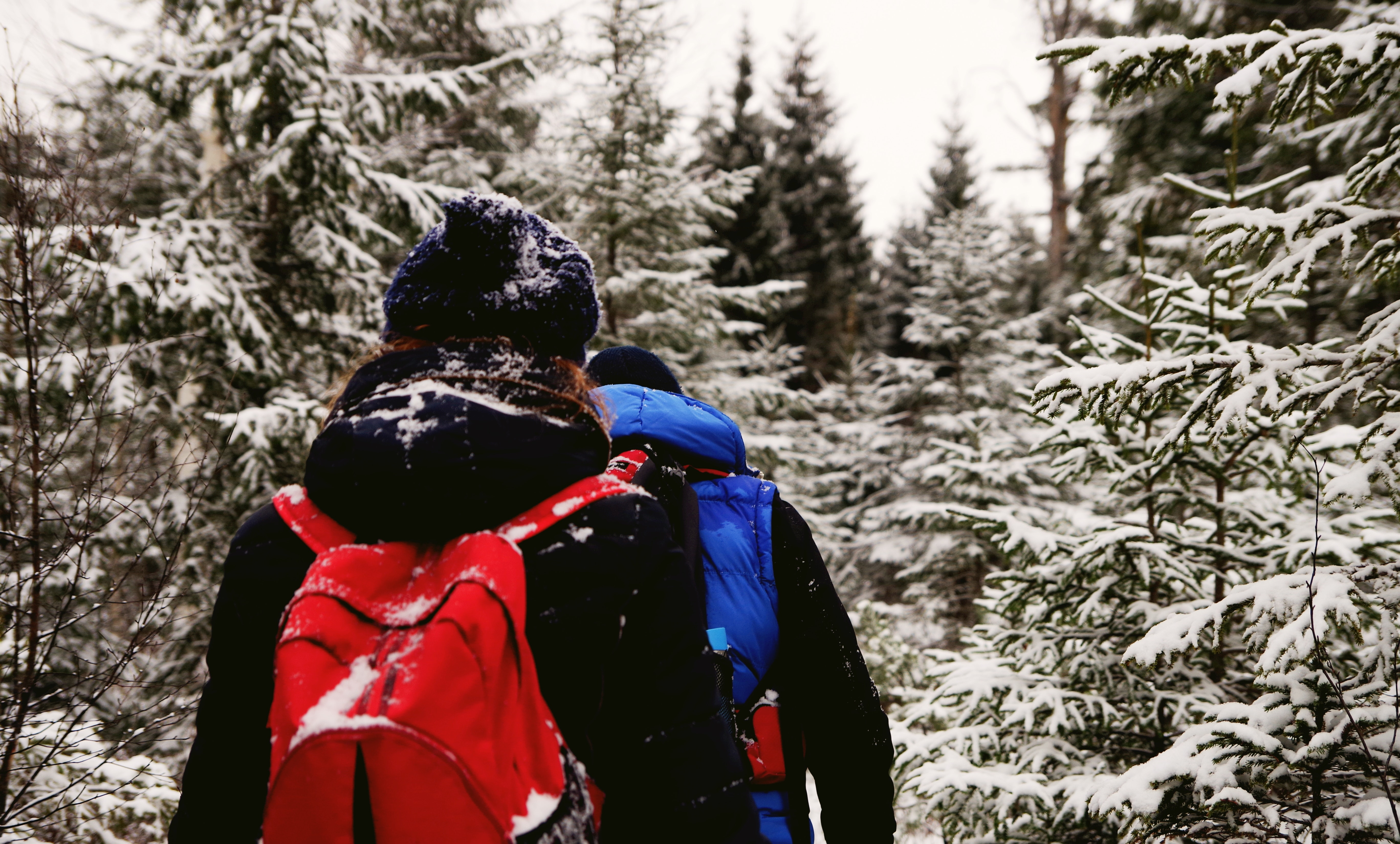 Two people wearing jacket and red backpack during winter season photo