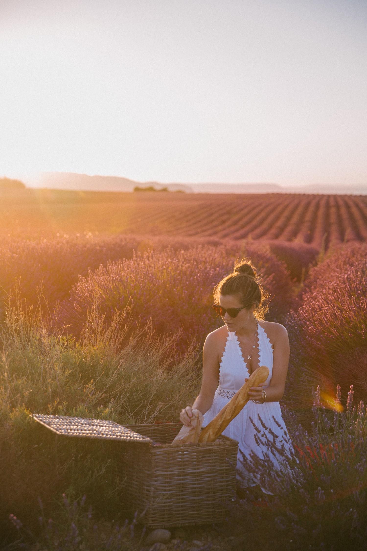 The Londoner » Lavender Sunset in Provence