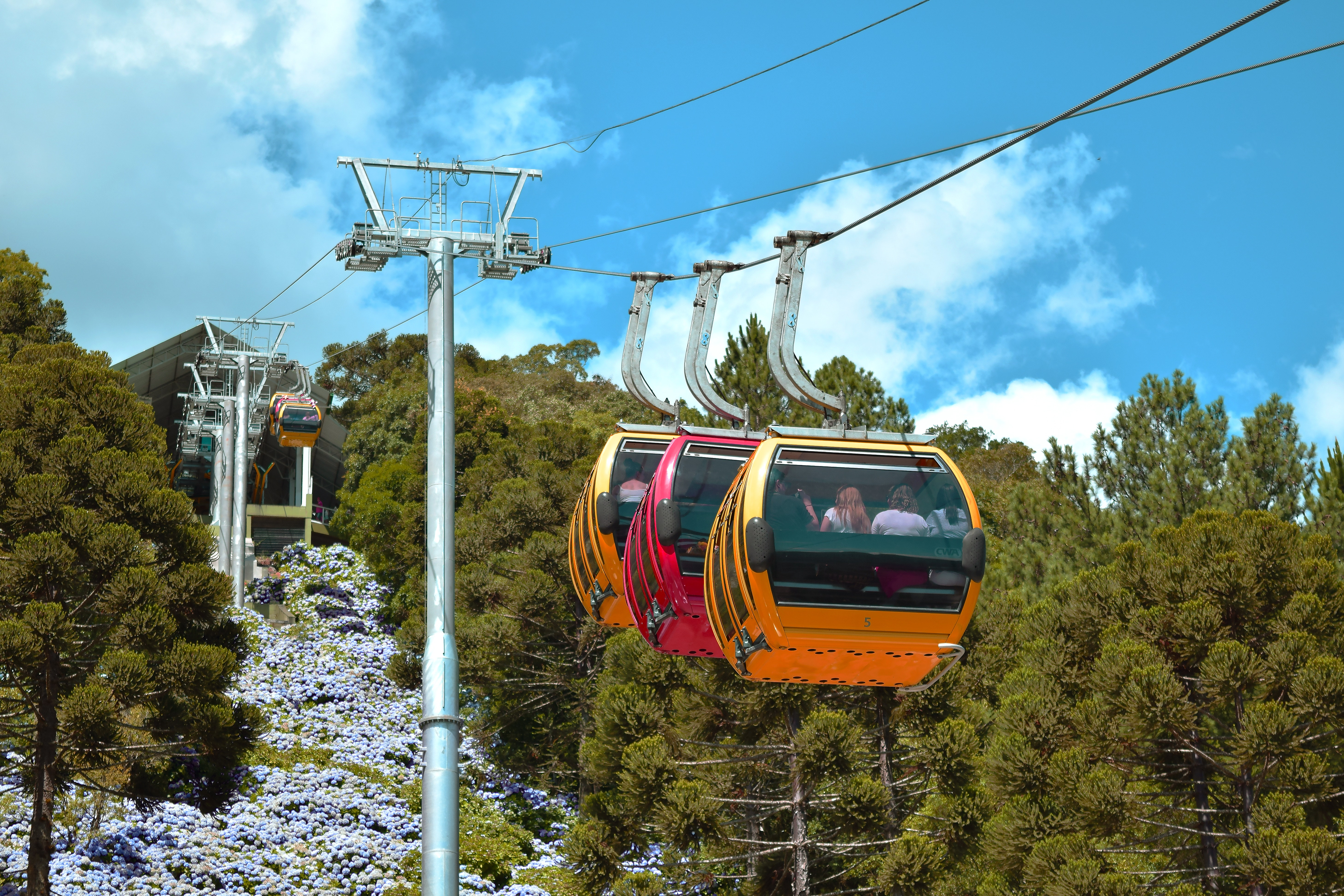 Two Yellow Cable Cab With Red in the Middle, Cable cars, Recreation, Vehicle, Trees, HQ Photo