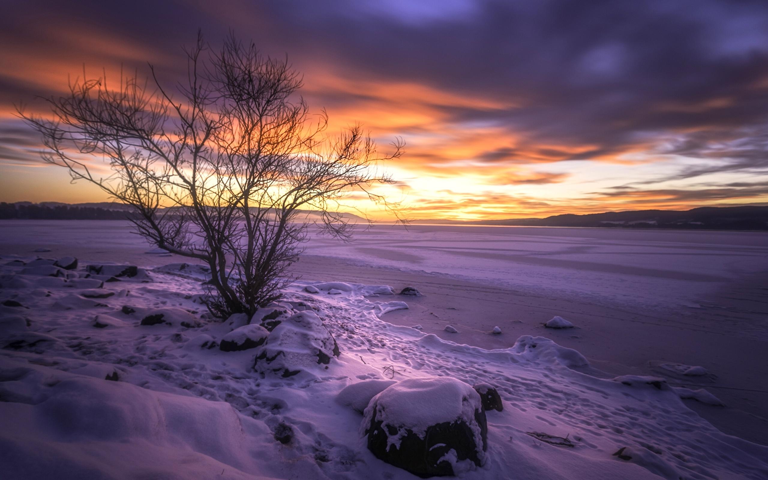Tyrifjorden lake photo