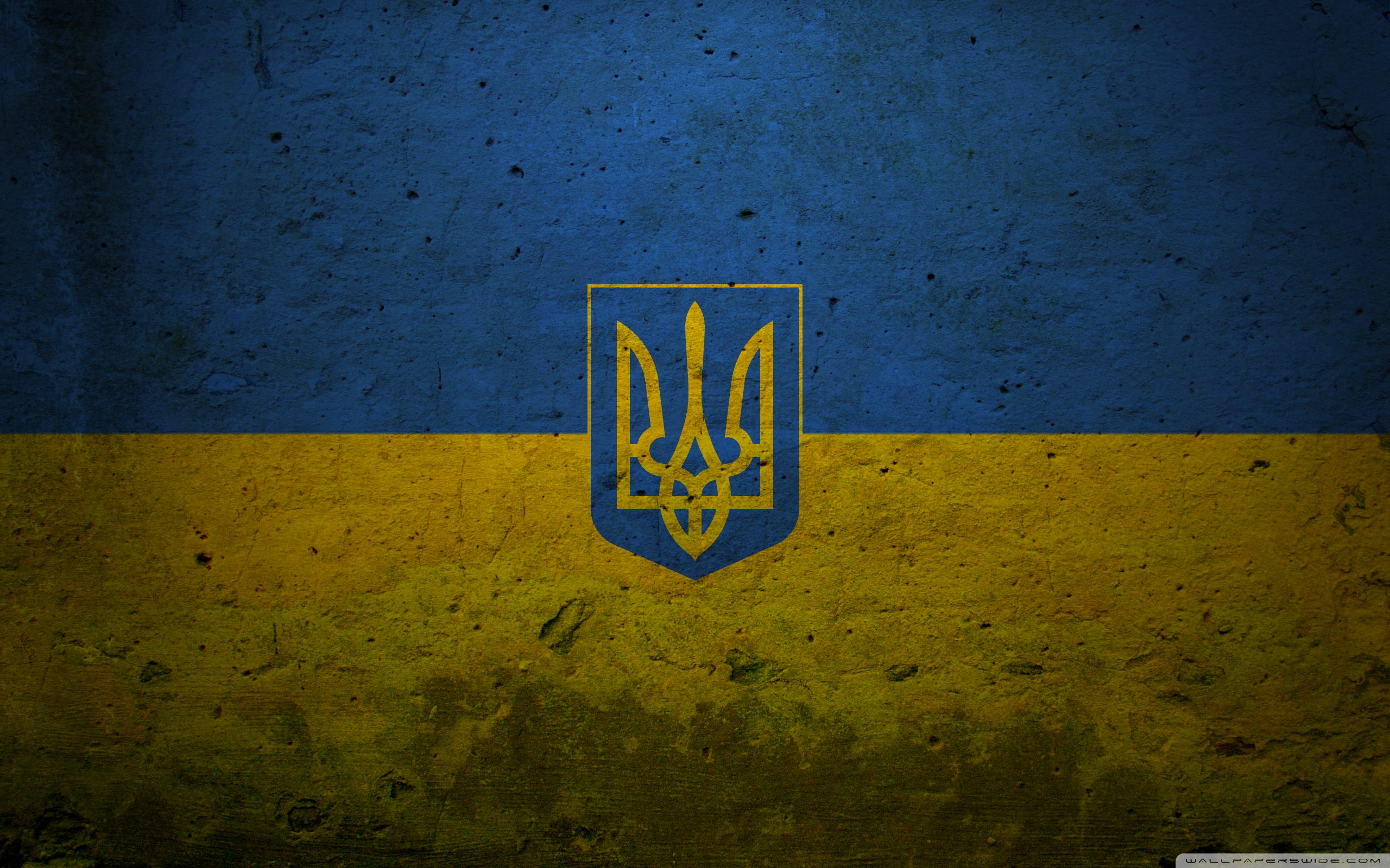 Ukraine grunge flag photo