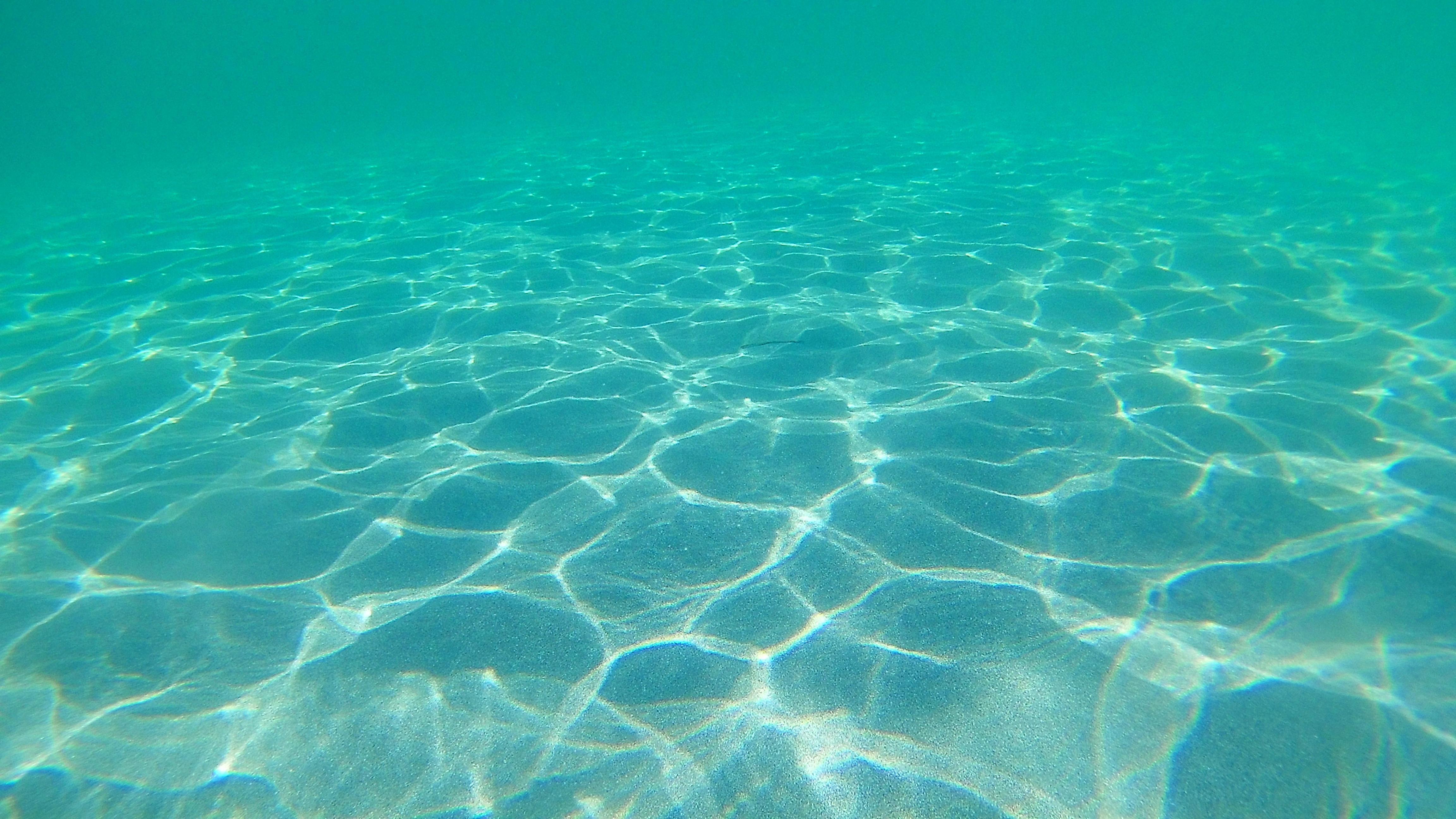 Underwater, molat island, croatia photo