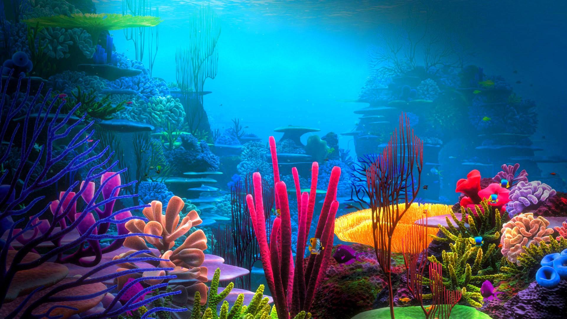 Oceans: Underwater World Beautiful Ocean Corals Water Coral ...
