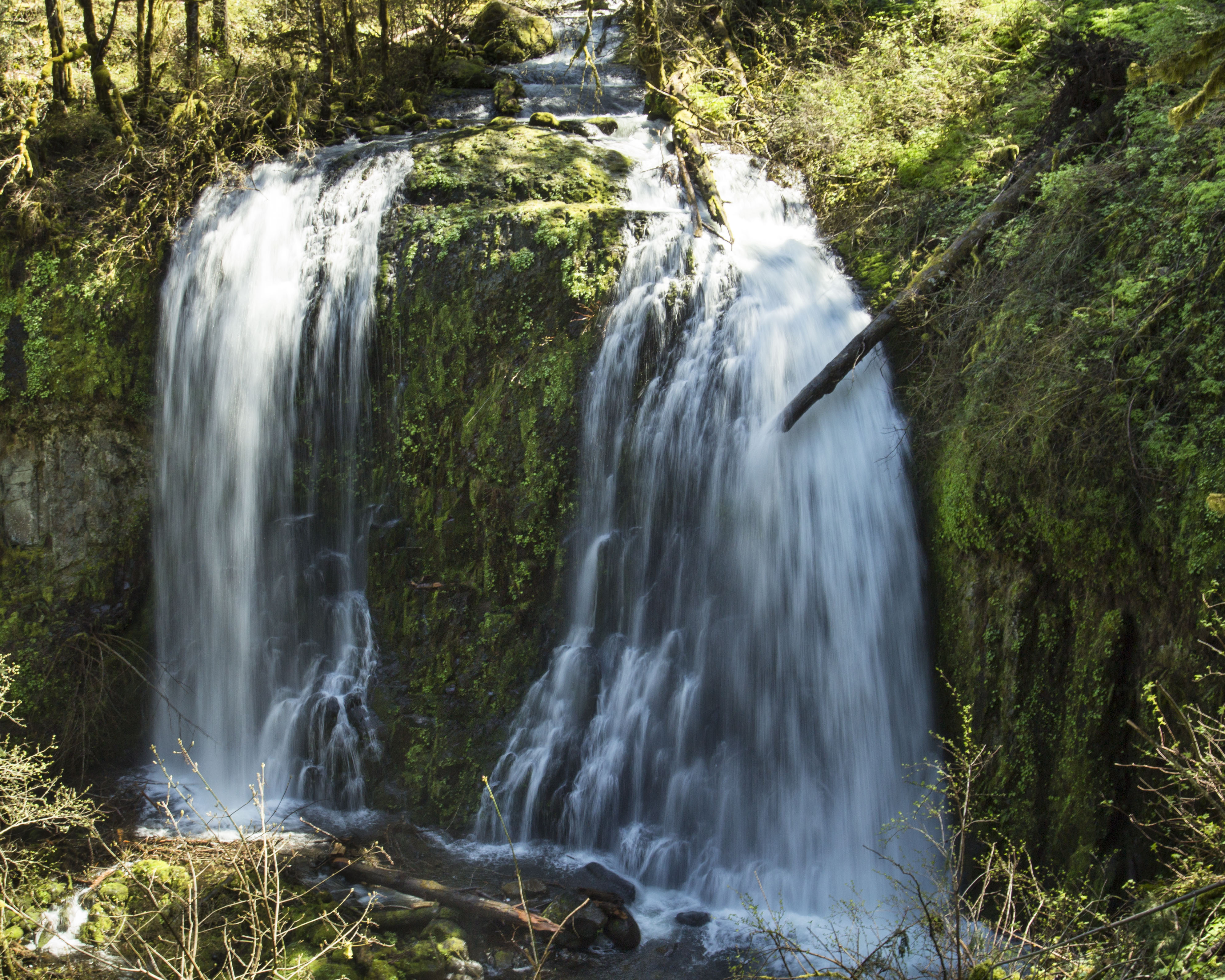 Upper McCord Falls, Oregon, Cliff, Creek, Falls, Forest, HQ Photo