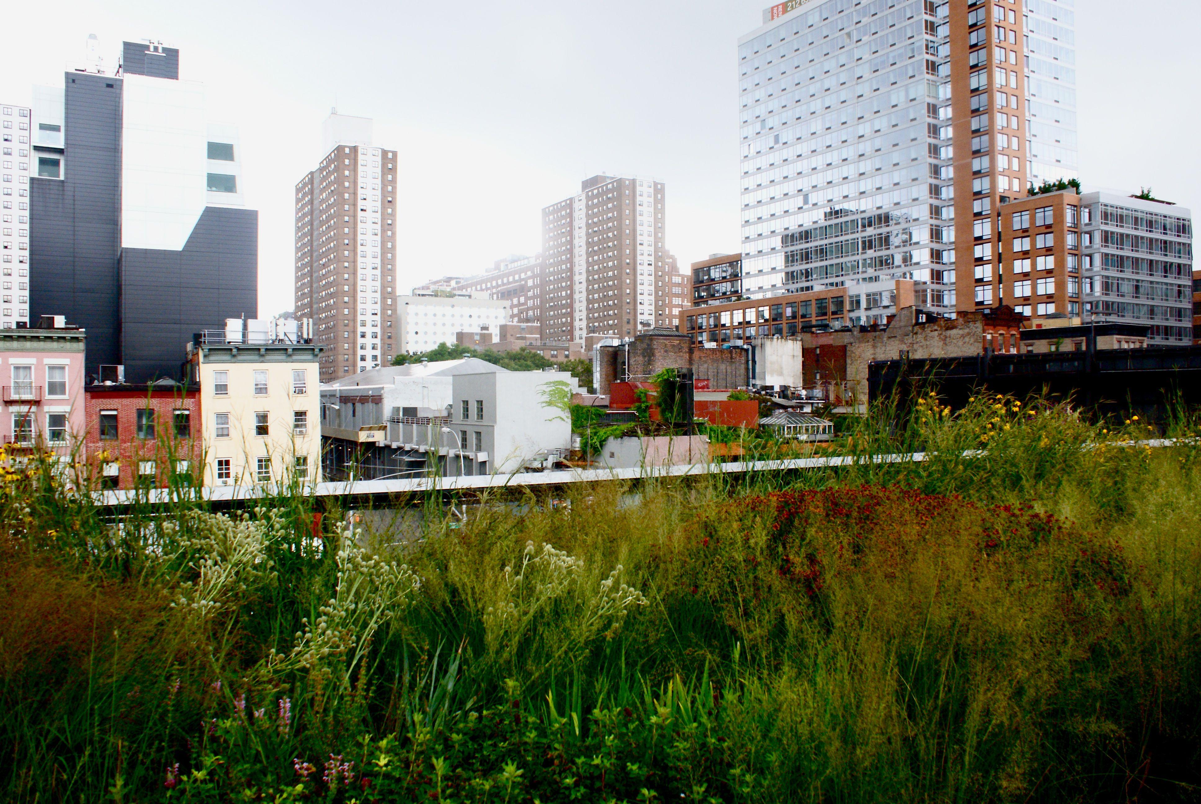 How Urban Landscape Design Works | Urban landscape, Landscape ...