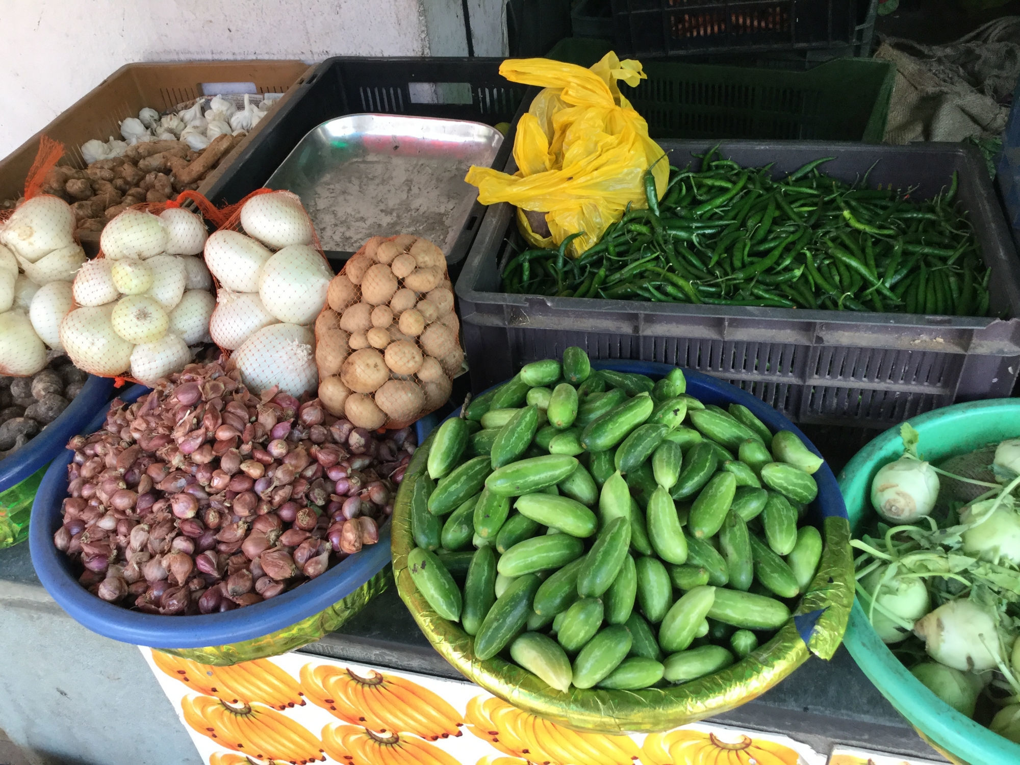 Bangalore Horticultural Fruits And Vegetables Stall Counter ...