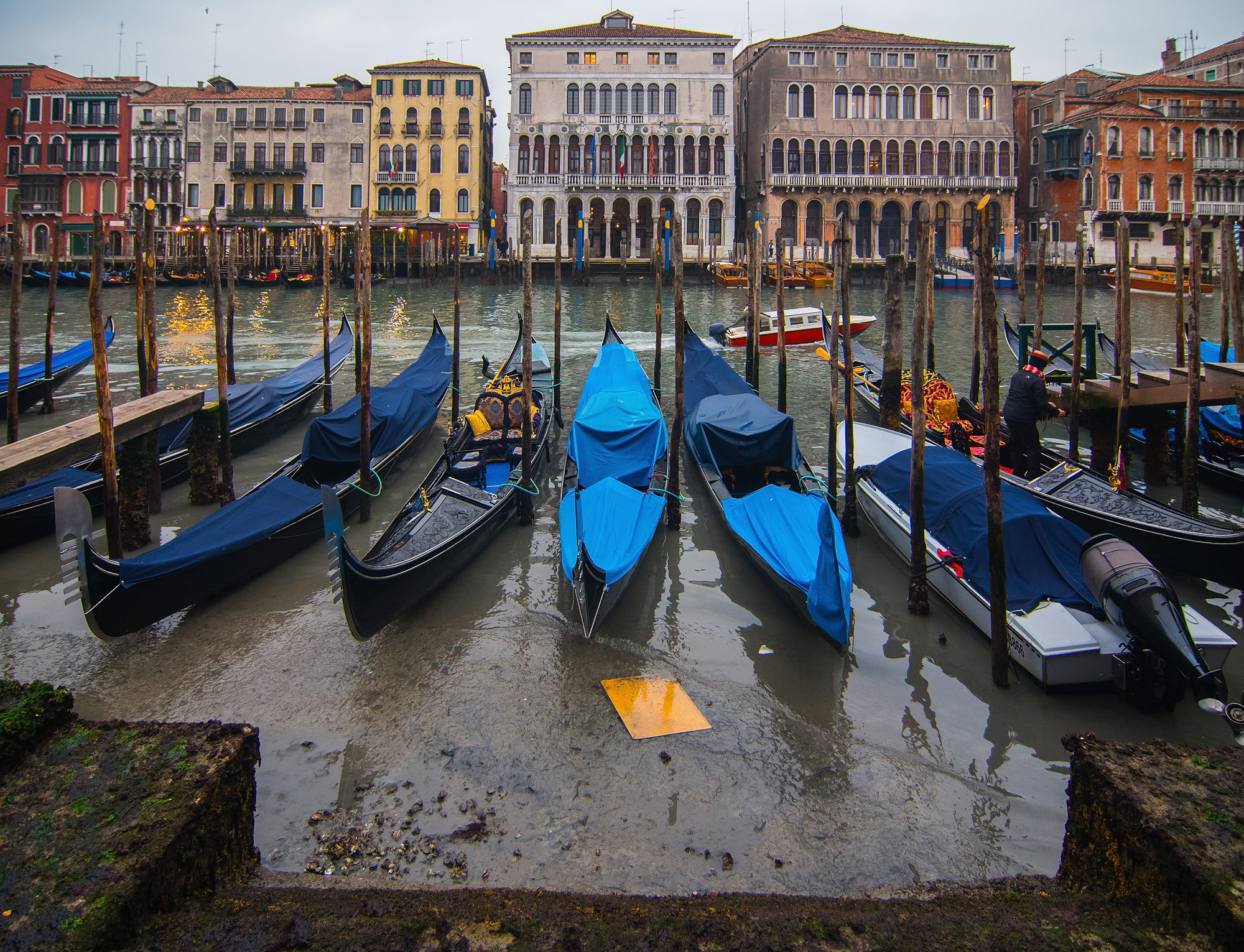 Low tide in Venice grounds all gondolas | 1 | New York Post