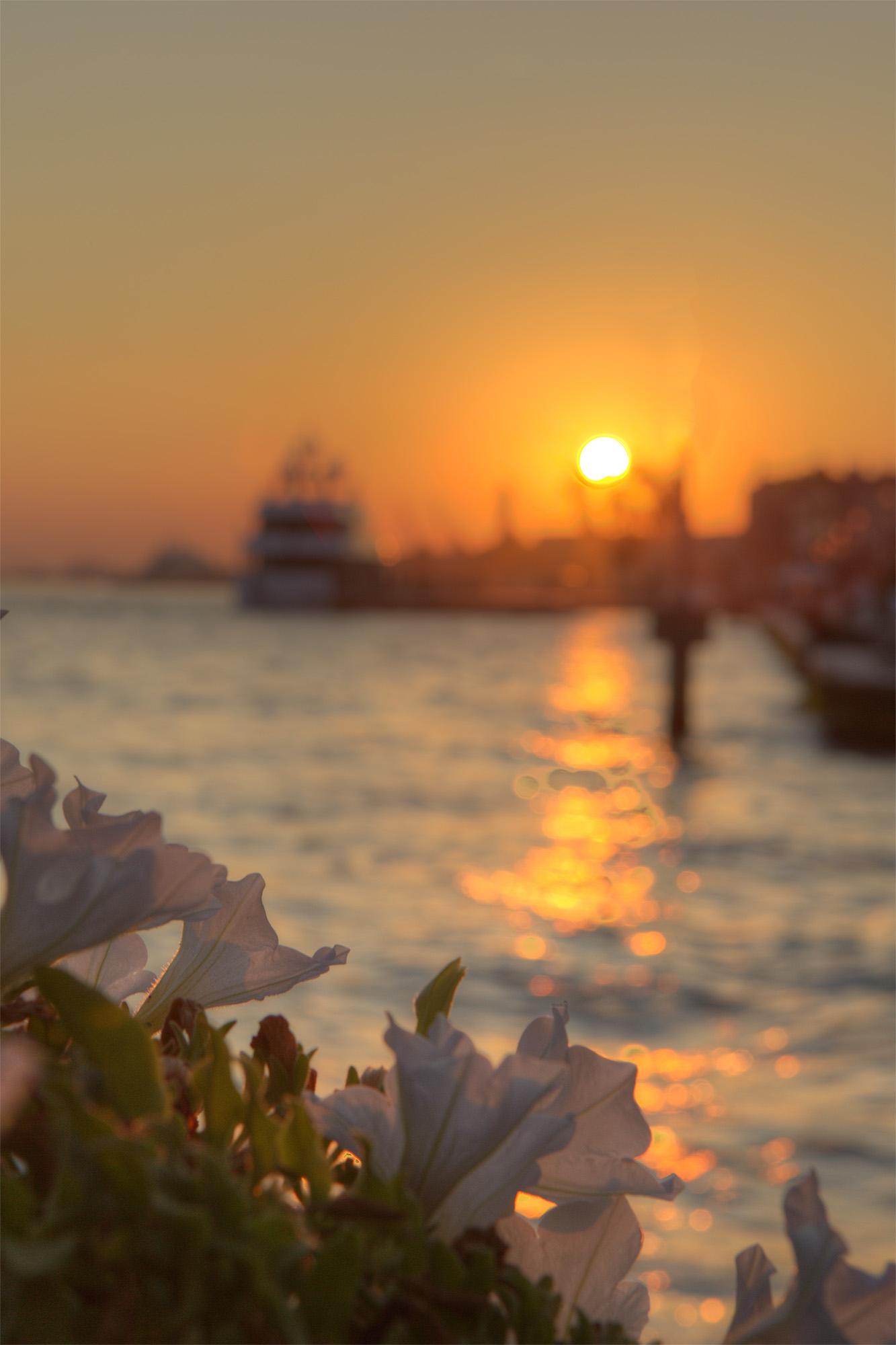 Venice Sunset, Adriatic, Tourism, Light, Majestic, HQ Photo