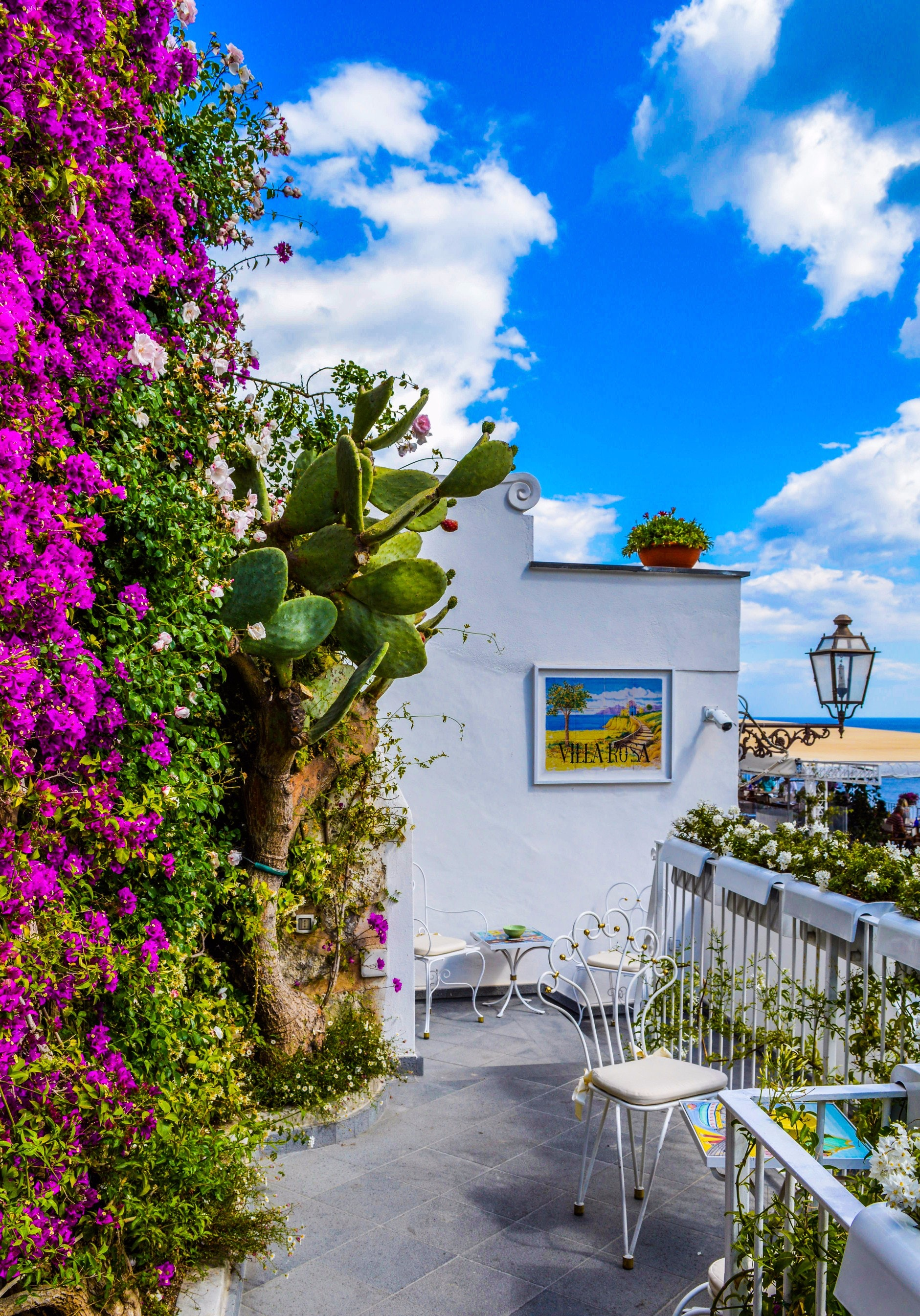 Veranda surrounded by green cactus and pink bougainvillea photo