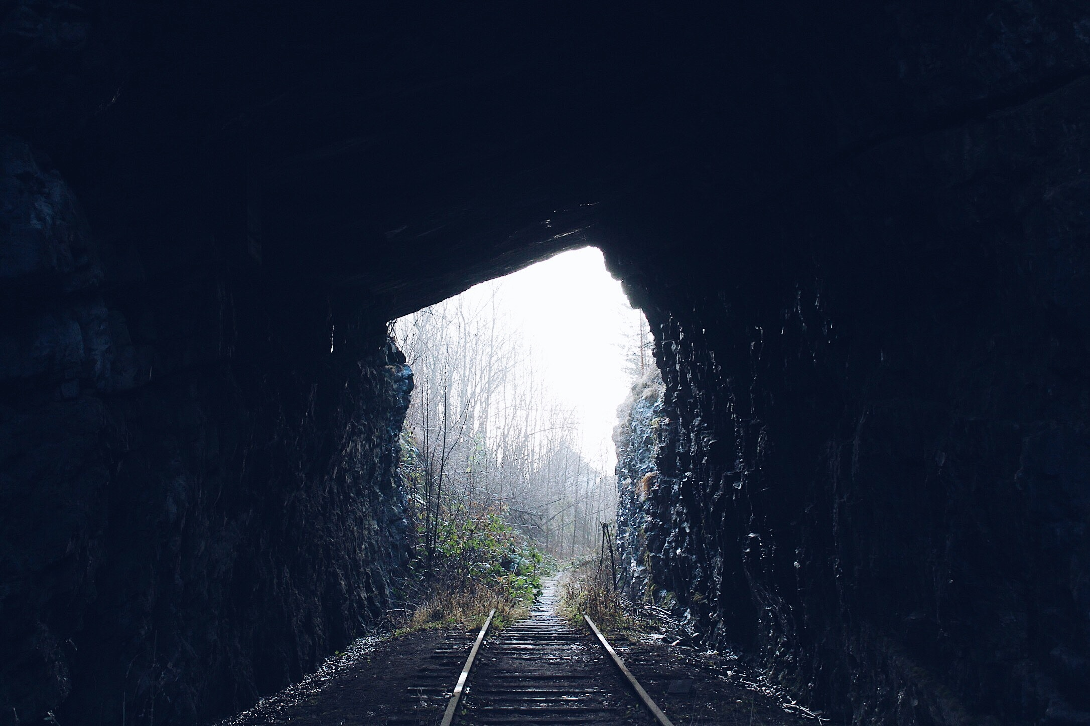 View of Tunnel, Stone wall, Tube, Trees, Travel, HQ Photo