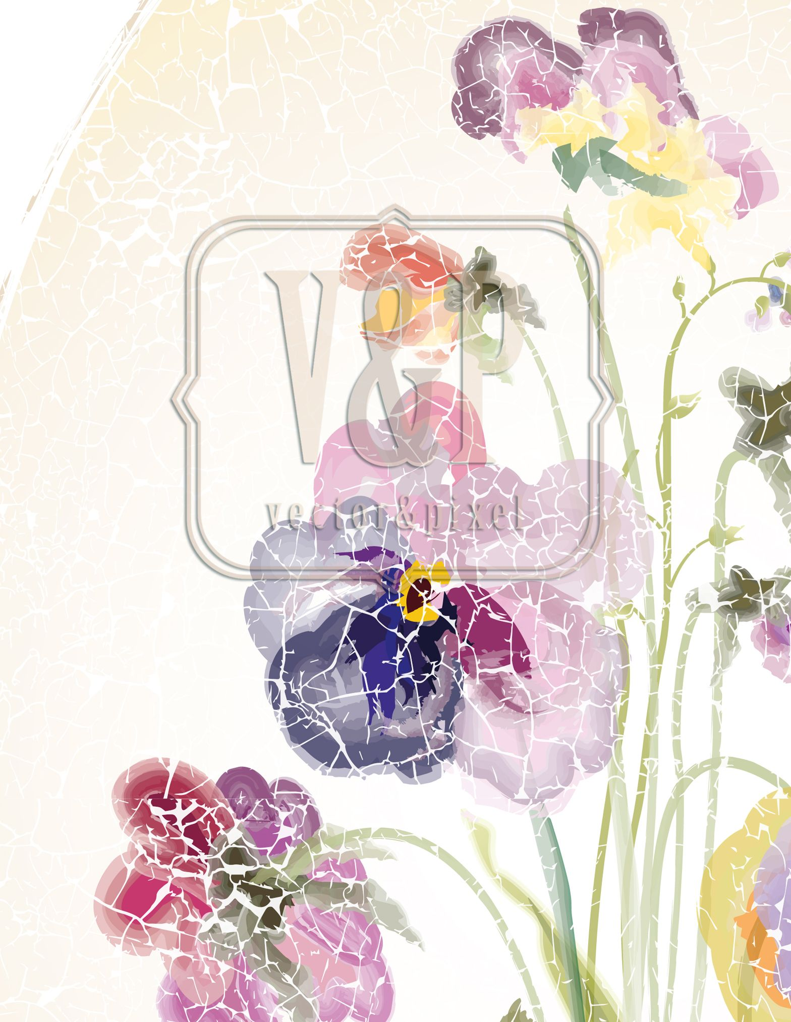 Pansy and Forget-me-not flowers are drawn in a vector program and ...