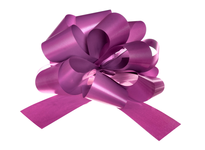 Violet bow photo