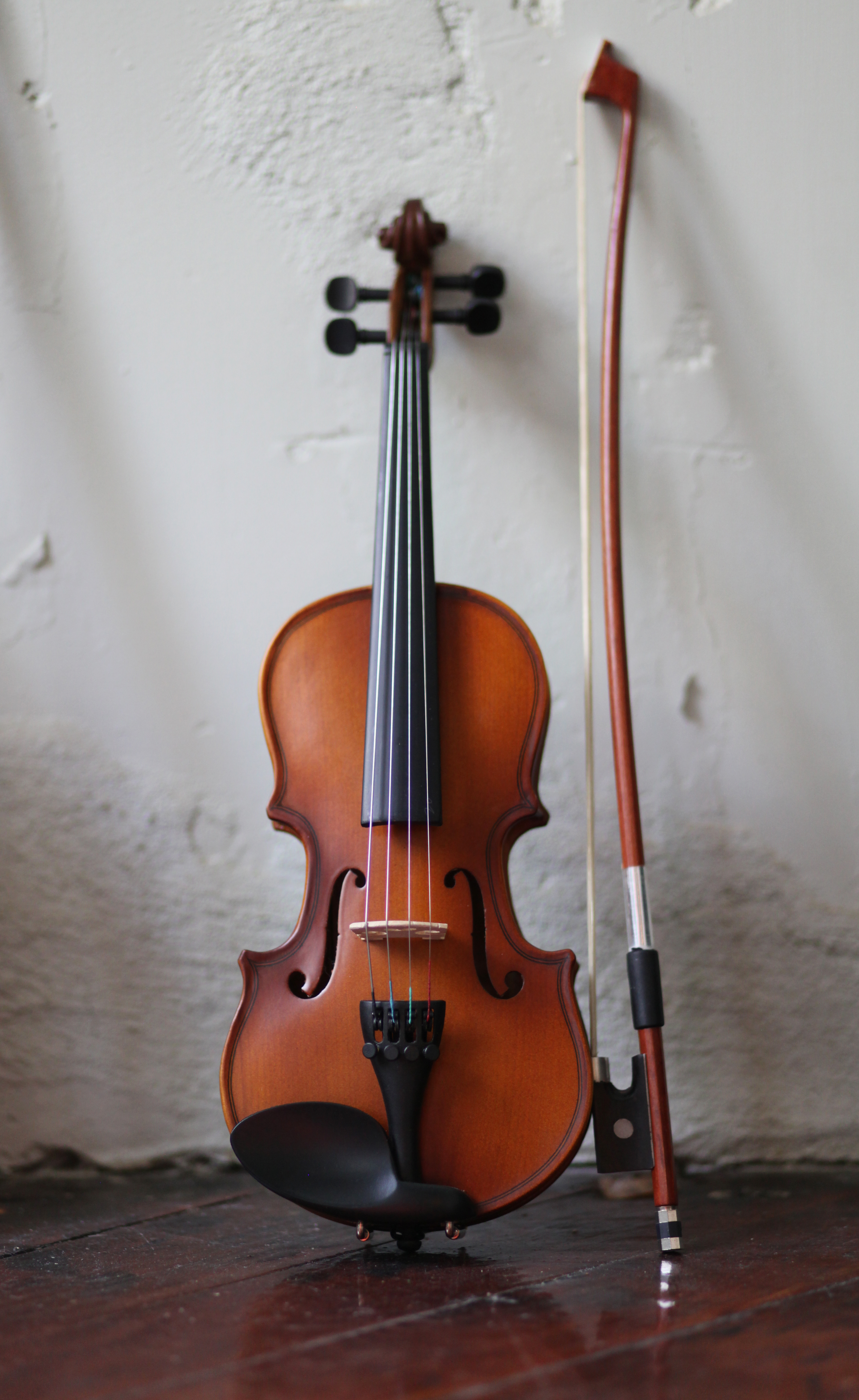 Violin and Guitar Rentals are Here! - Philly Music Lessons