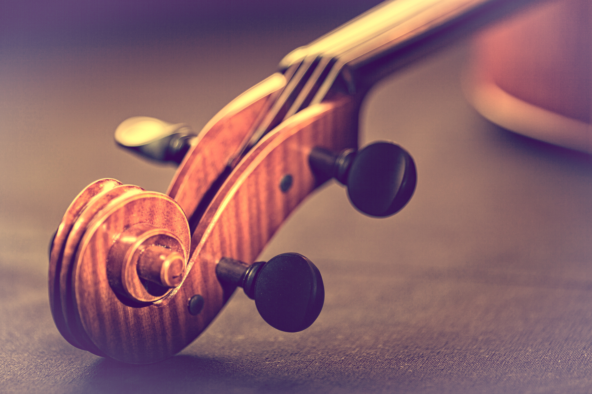 Violin - scroll and pegbox close-up - retro looks warm colors photo