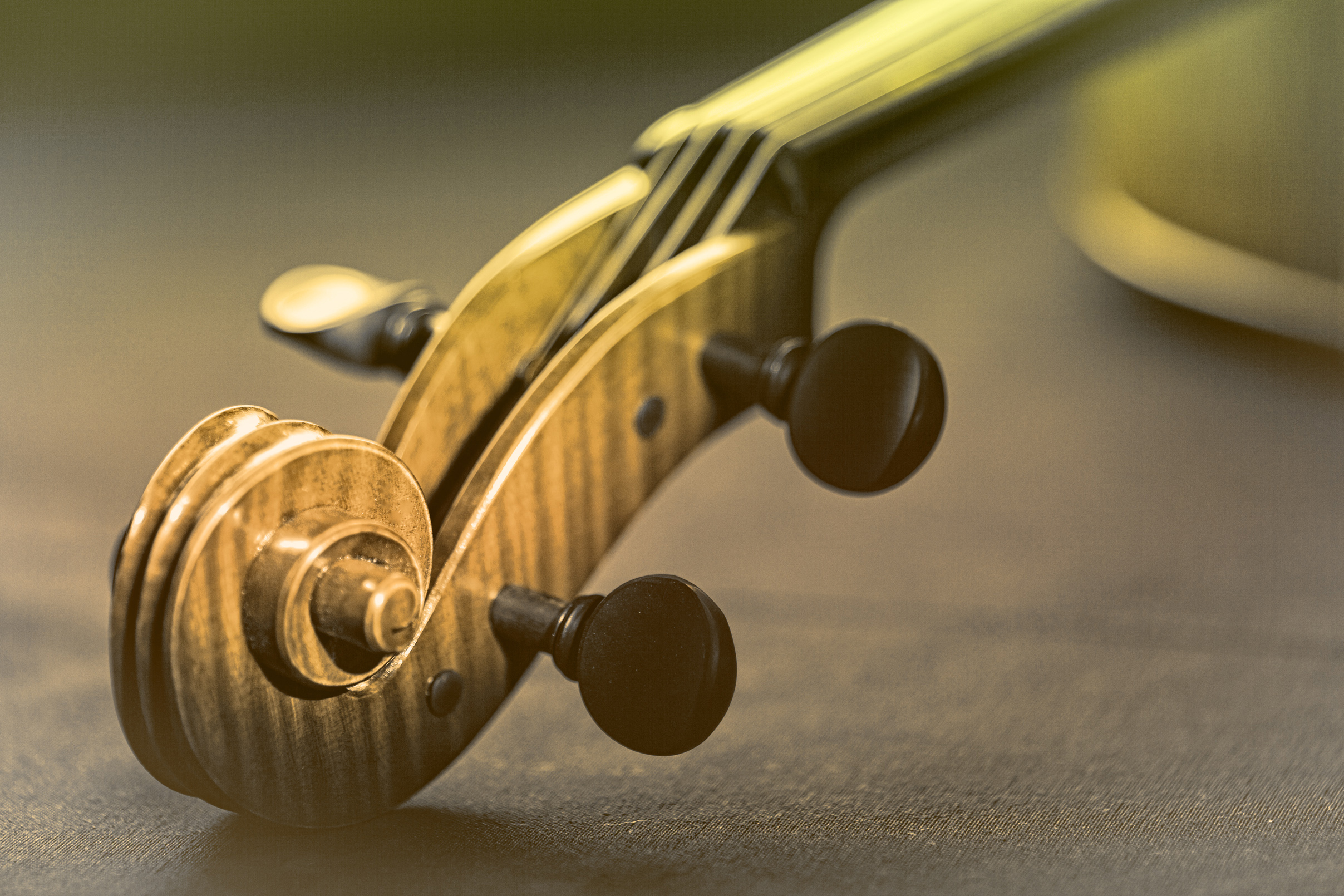 Violin - scroll and pegbox close-up - retro looks photo