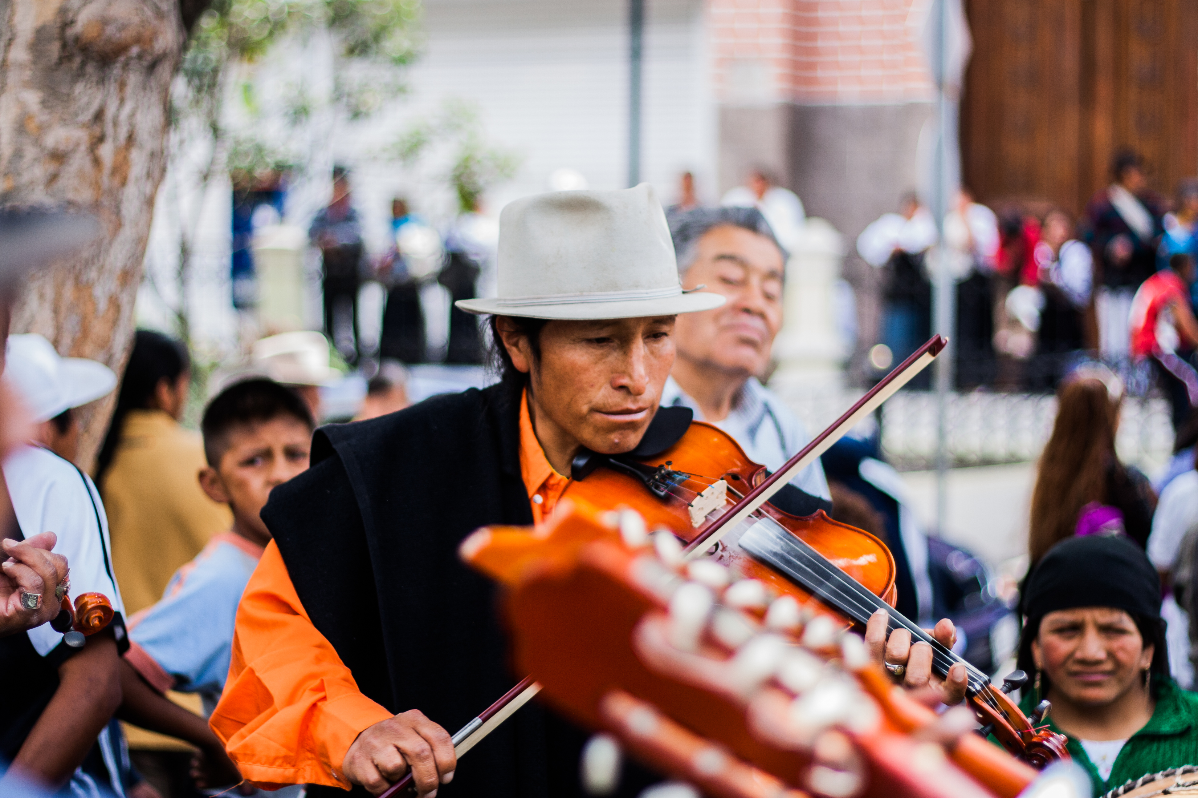 Violinist, Violin, People, Activity, Human, HQ Photo