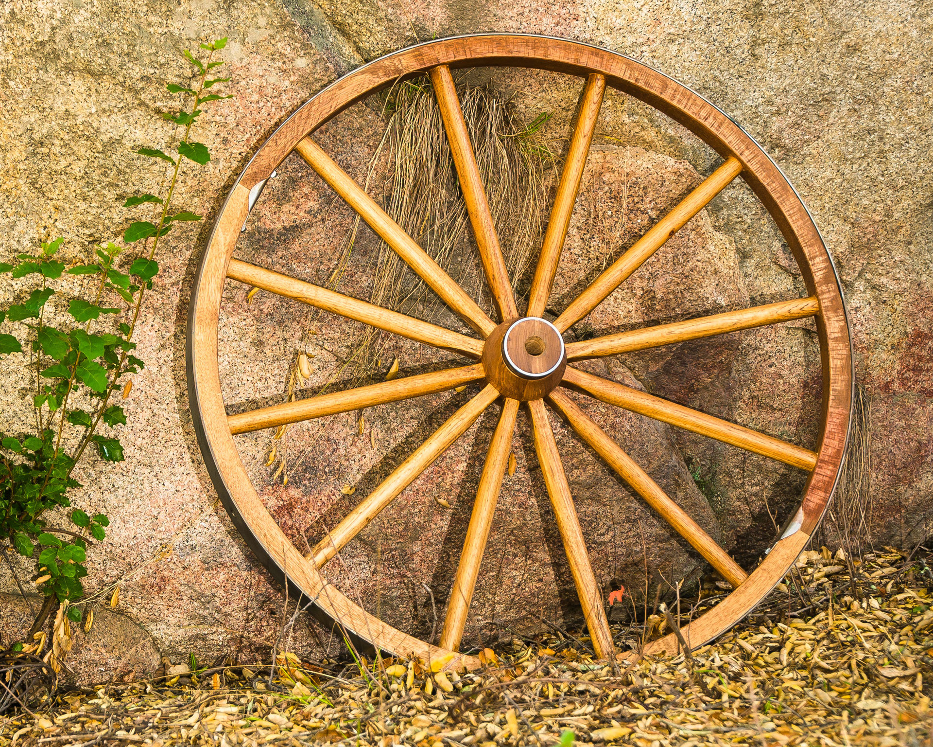 Wooden Wagon Wheels - Ponderosa Ranch Outfitters