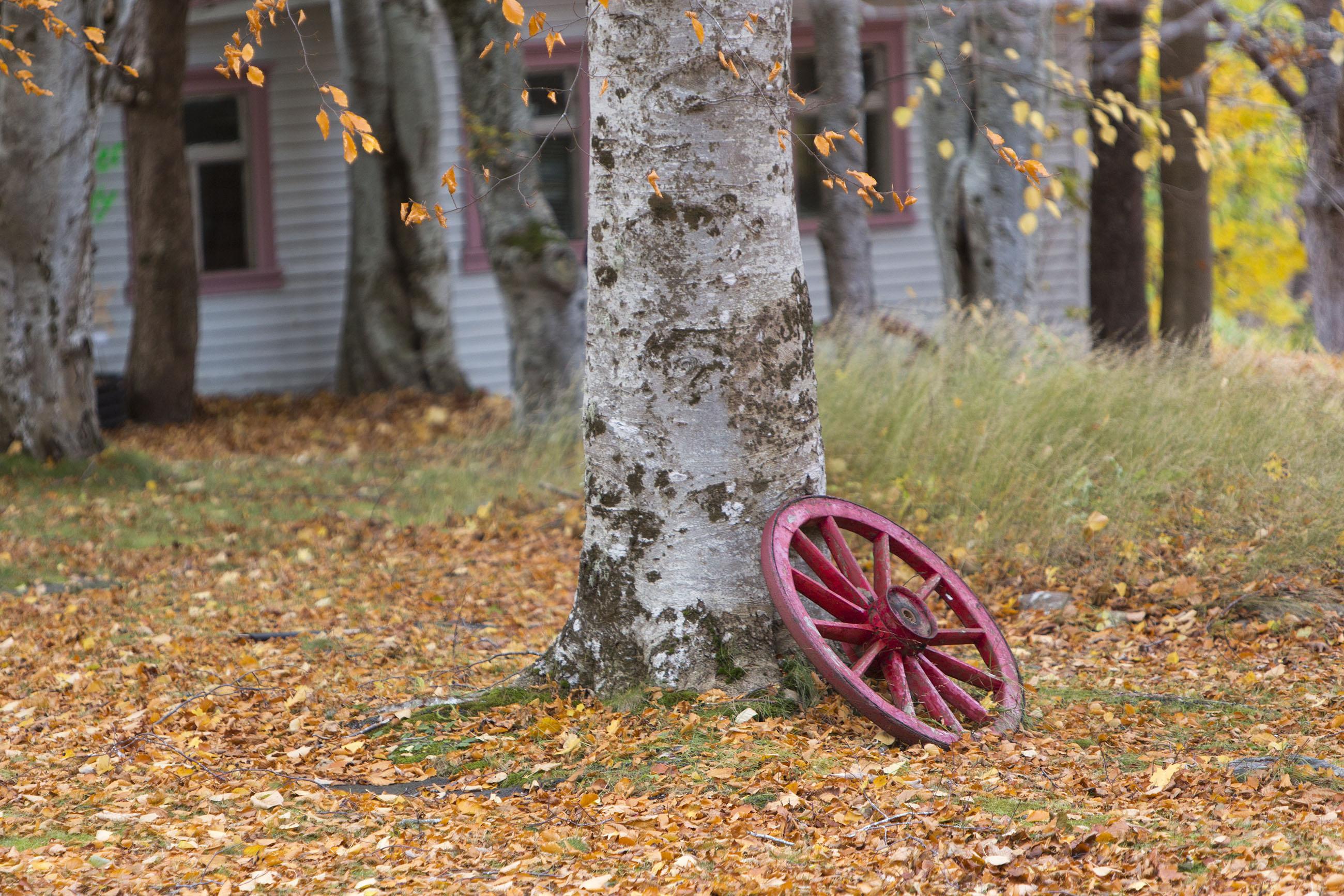 Wagon wheel, Ancient, Rural, Wood, Wheels, HQ Photo